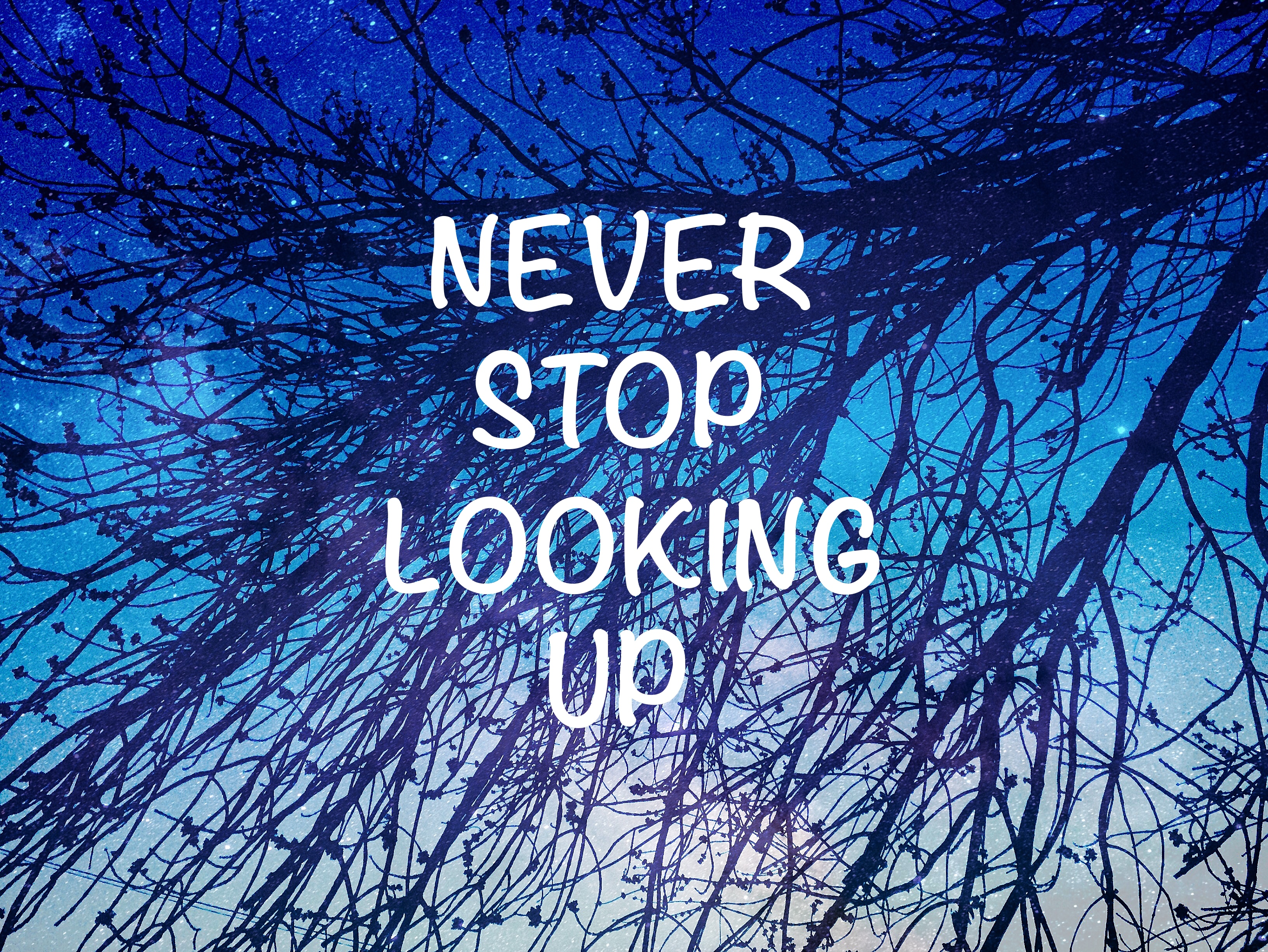 74767 download wallpaper Words, Starry Sky, Branches, Inscription, Motivation screensavers and pictures for free