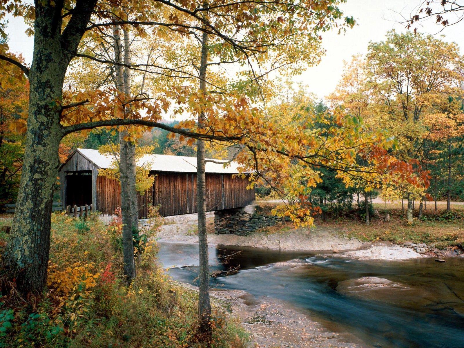 64452 Hintergrundbild 480x800 kostenlos auf deinem Handy, lade Bilder Natur, Flüsse, Bäume, Herbst, Brücke, Waterville, Vermont 480x800 auf dein Handy herunter