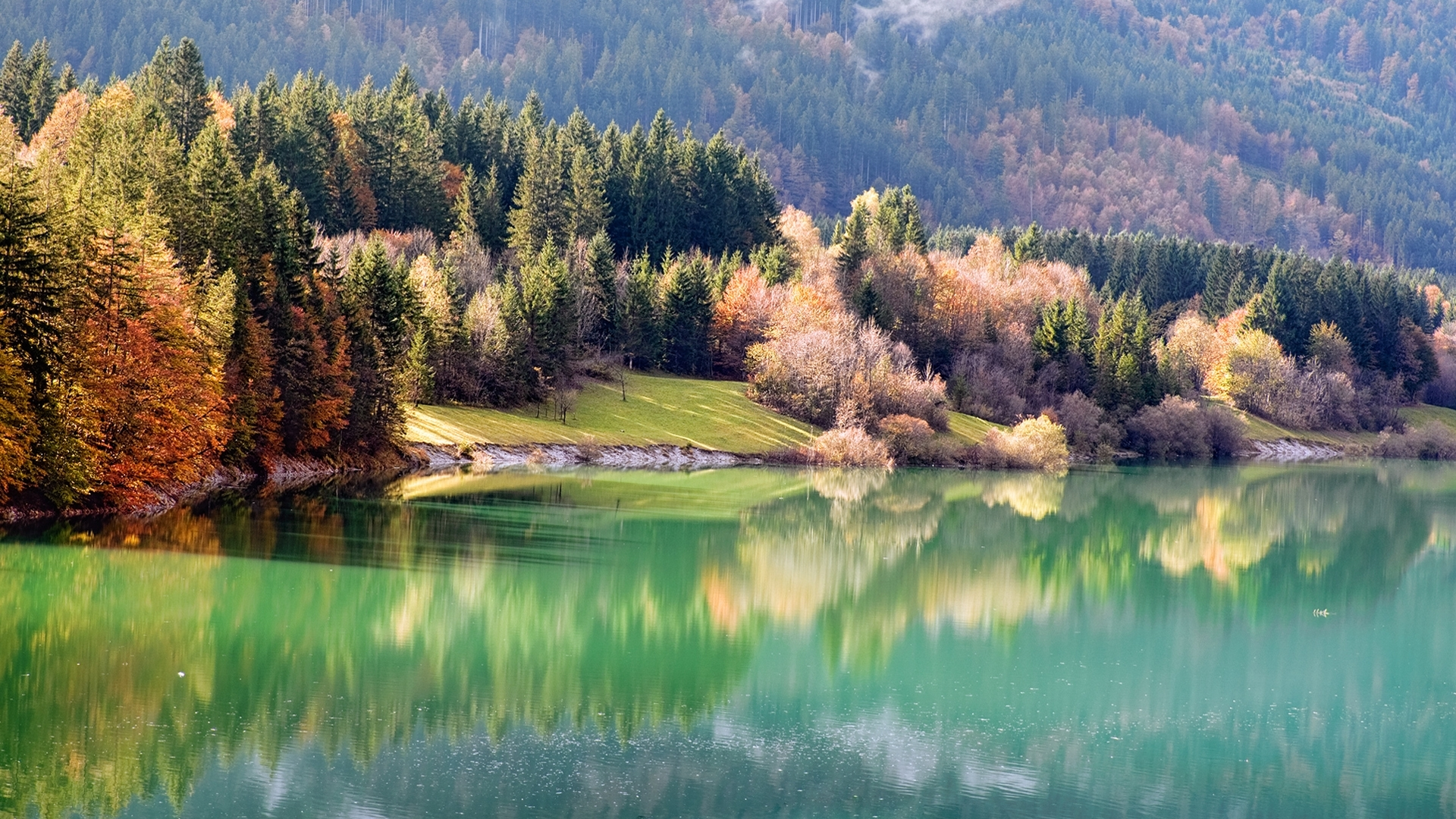 48981 download wallpaper Landscape, Nature, Trees, Lakes screensavers and pictures for free