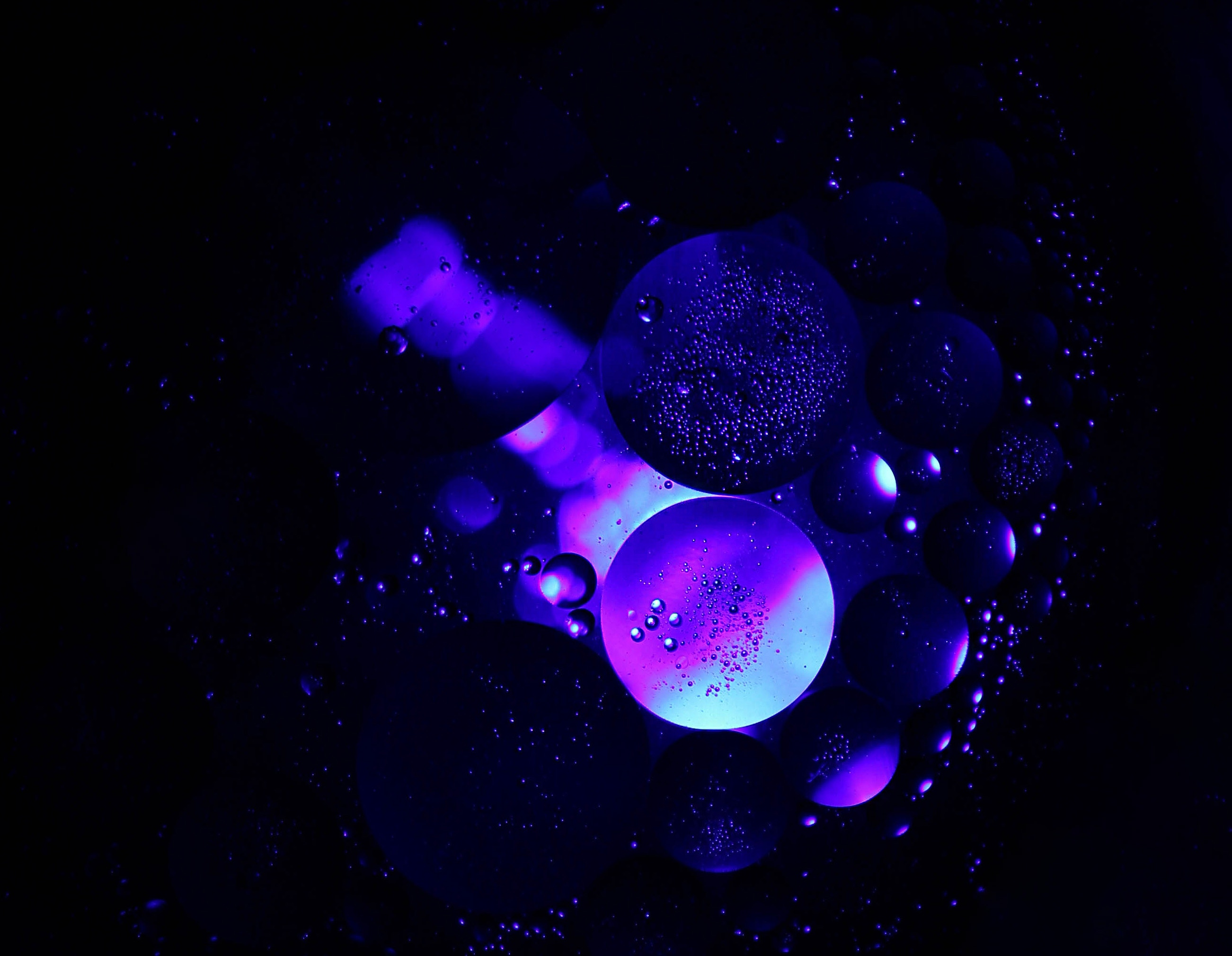 59059 Screensavers and Wallpapers Purple for phone. Download Structure, Bubbles, Transparent, Macro, Circles, Purple, Air pictures for free
