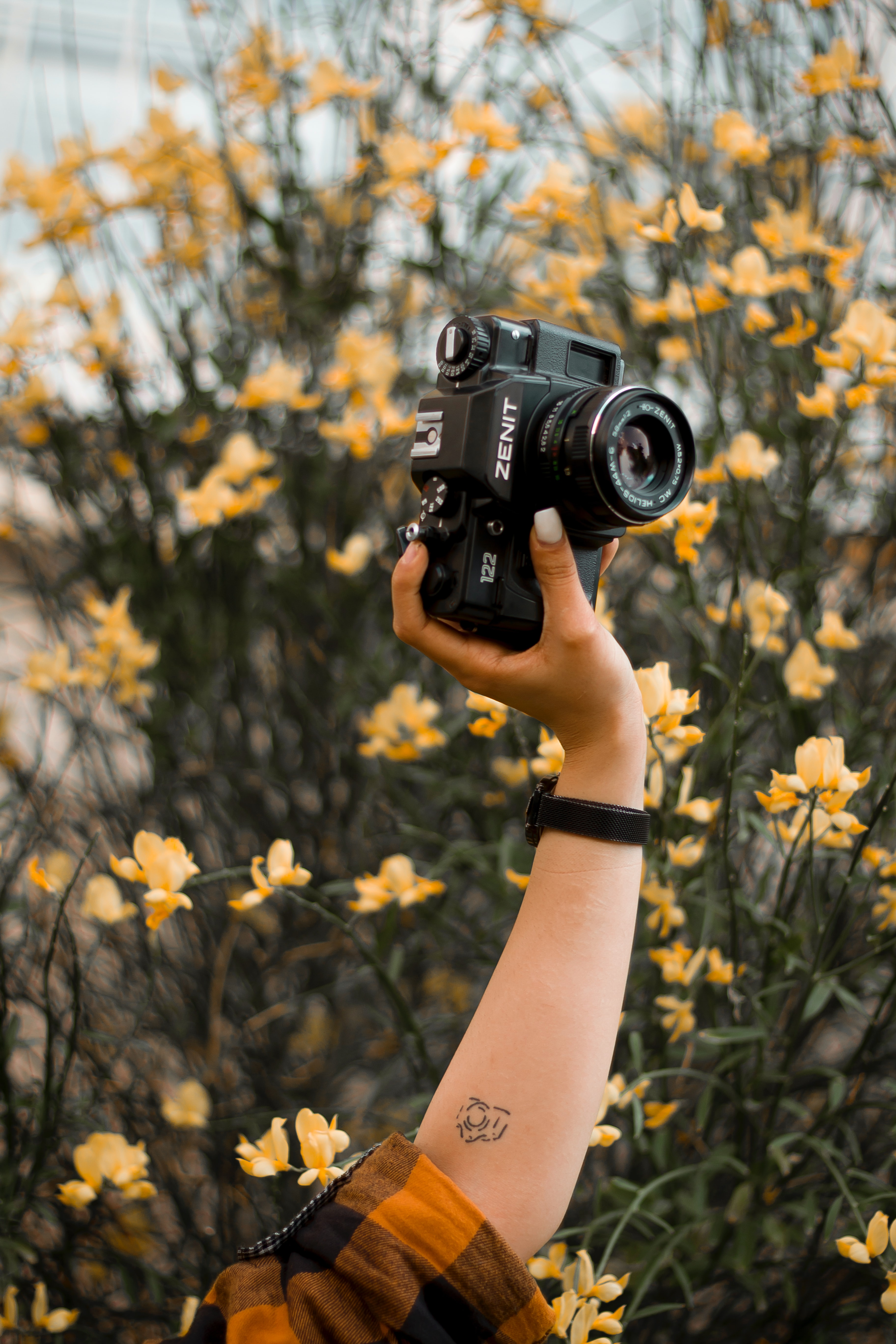 77469 download wallpaper Flowers, Hand, Miscellanea, Miscellaneous, Tattoo, Retro, Camera screensavers and pictures for free
