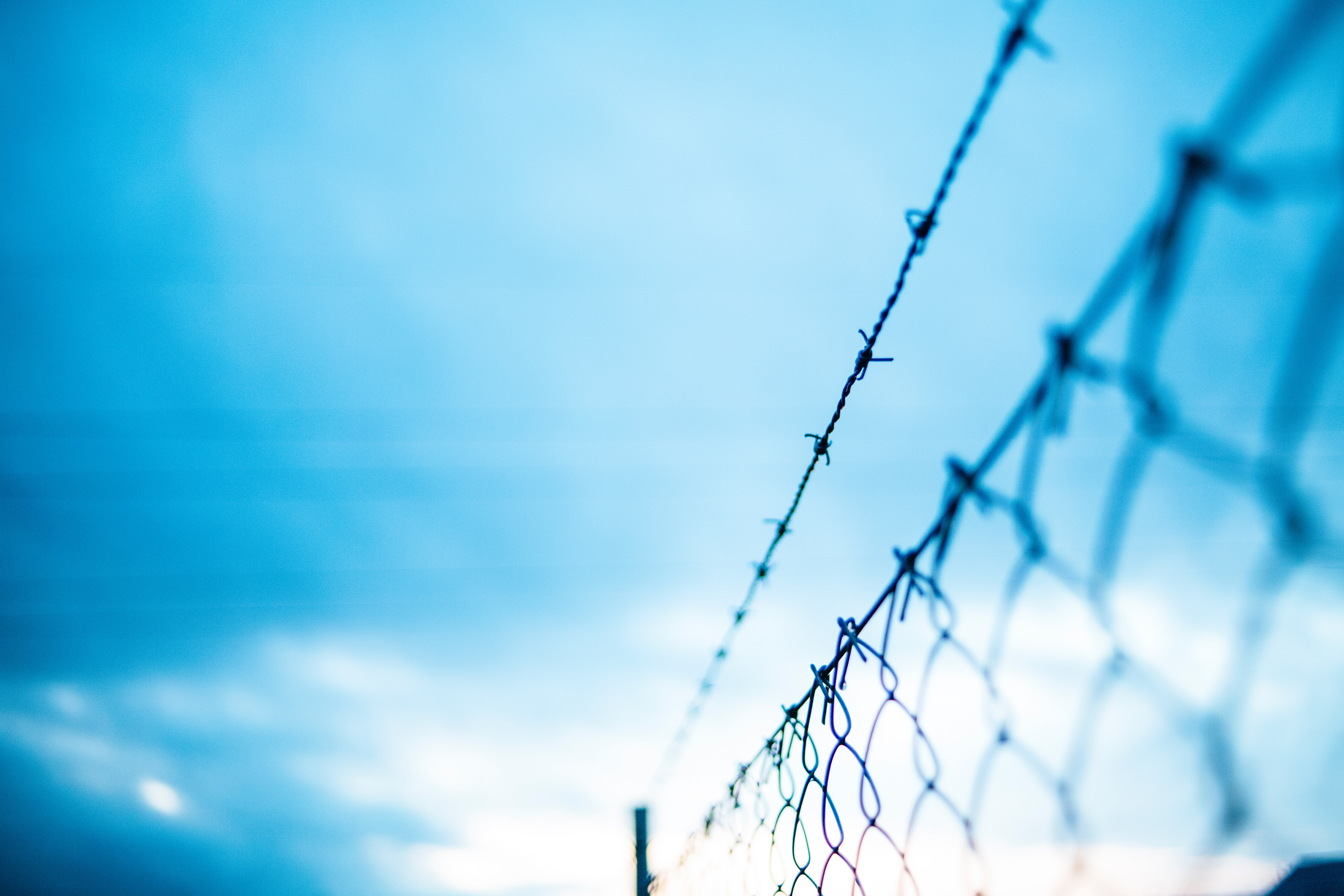 103056 download wallpaper Macro, Grid, Fence, Barbed, Spiny, Fencing, Enclosure, Barbed Wire screensavers and pictures for free