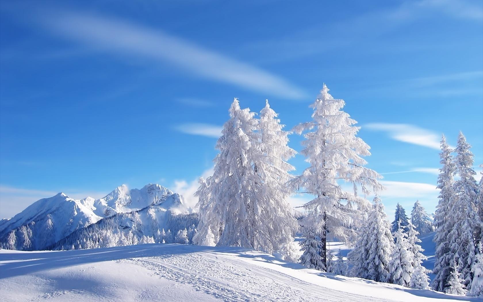 9452 скачать обои Пейзаж, Зима, Деревья - заставки и картинки бесплатно