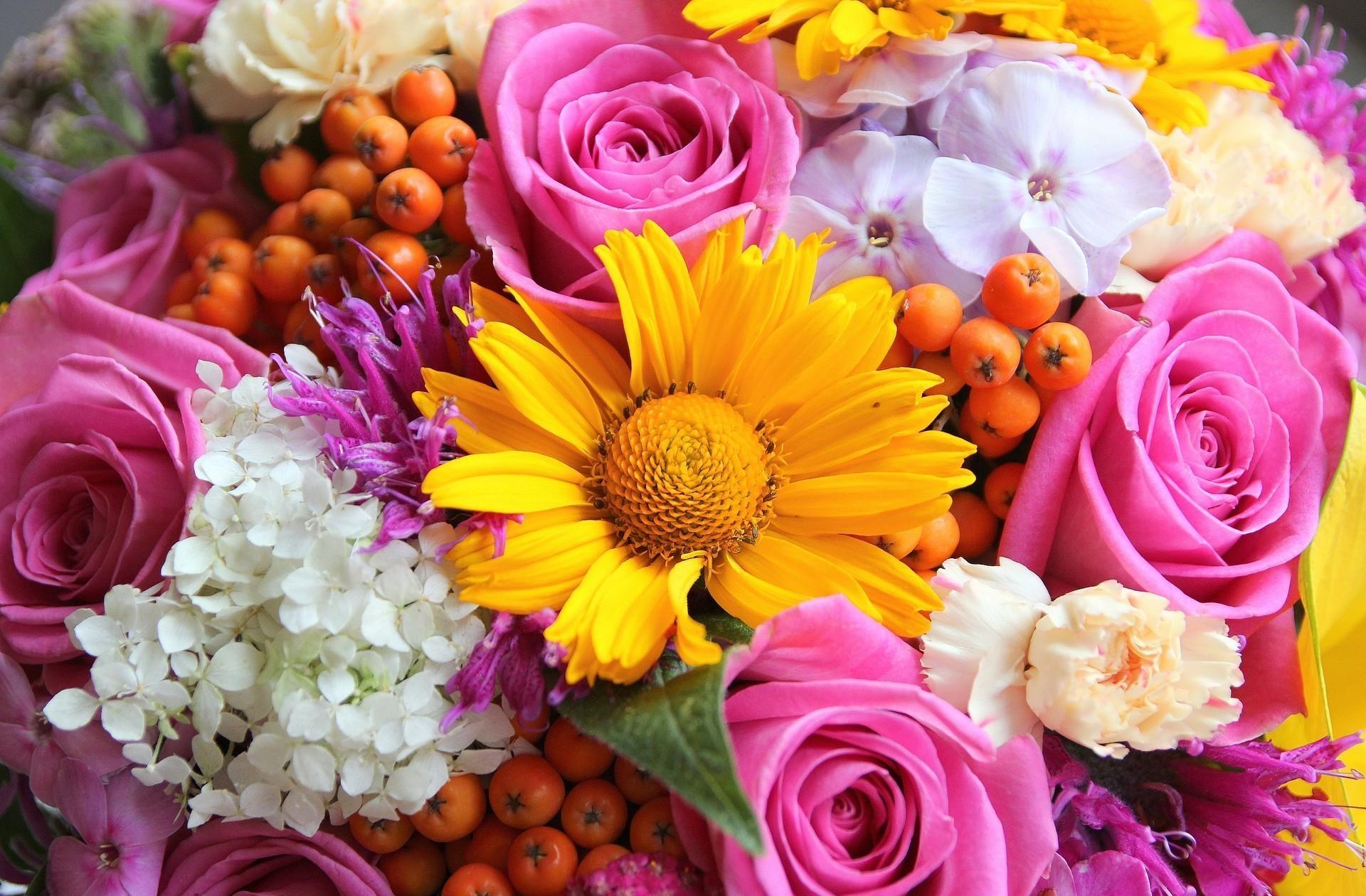 158135 скачать обои Рябина, Розы, Цветы, Герберы, Букет, Крупный План, Флоксы - заставки и картинки бесплатно