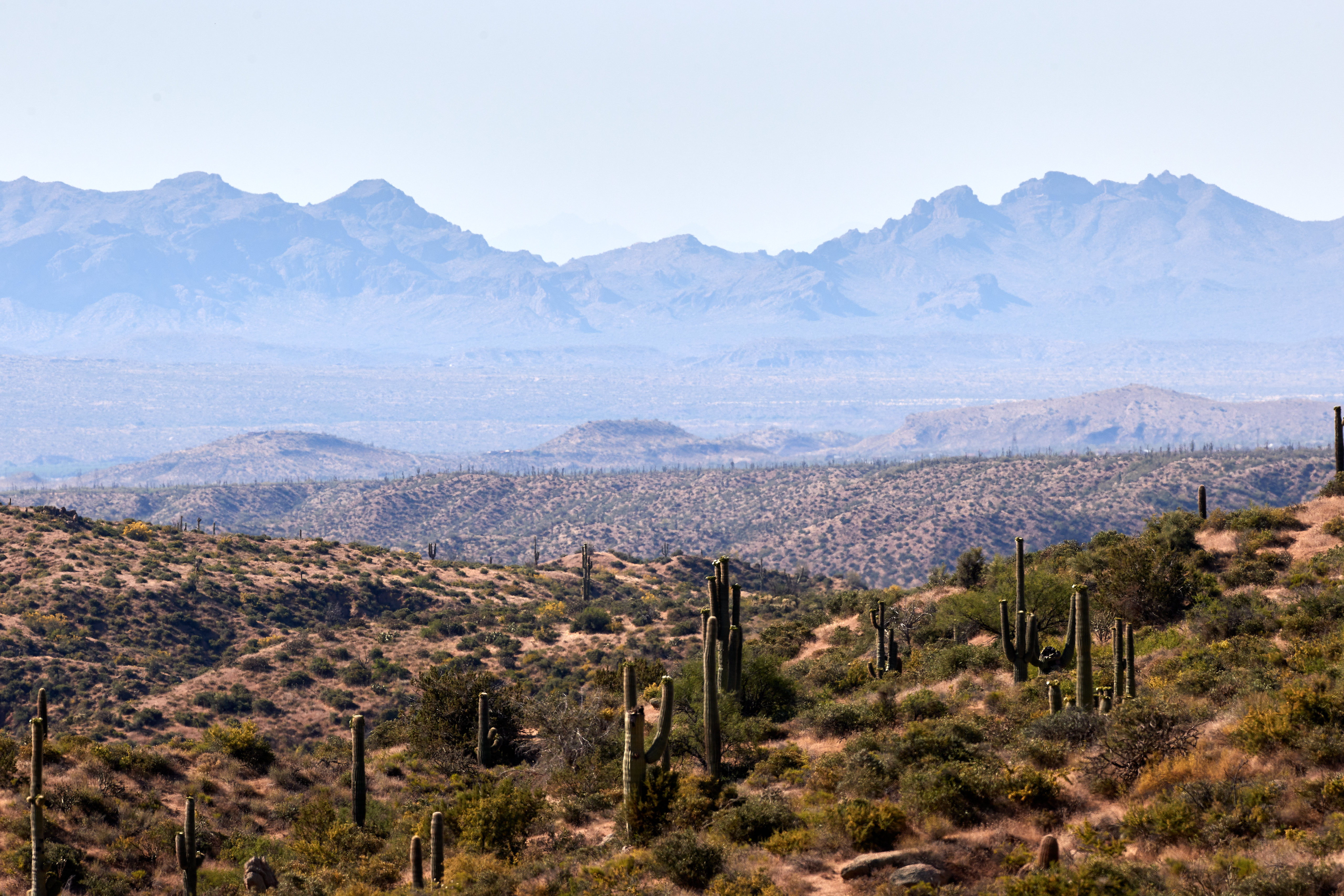 121253 descargar fondo de pantalla Naturaleza, Pradera, Dahl, Distancia, Montañas, Cactus: protectores de pantalla e imágenes gratis