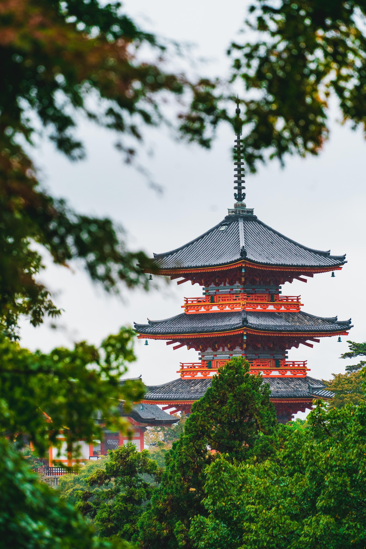 64962 免費下載壁紙 杂项, 宝塔, 寺庙, 神殿, 建造, 建筑, 树, 分行, 分支 屏保和圖片