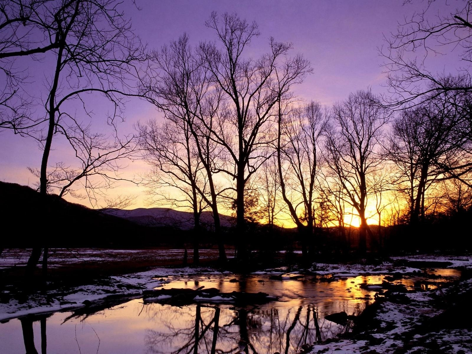 4217 download wallpaper Landscape, Winter, Water, Rivers, Trees, Sunset screensavers and pictures for free