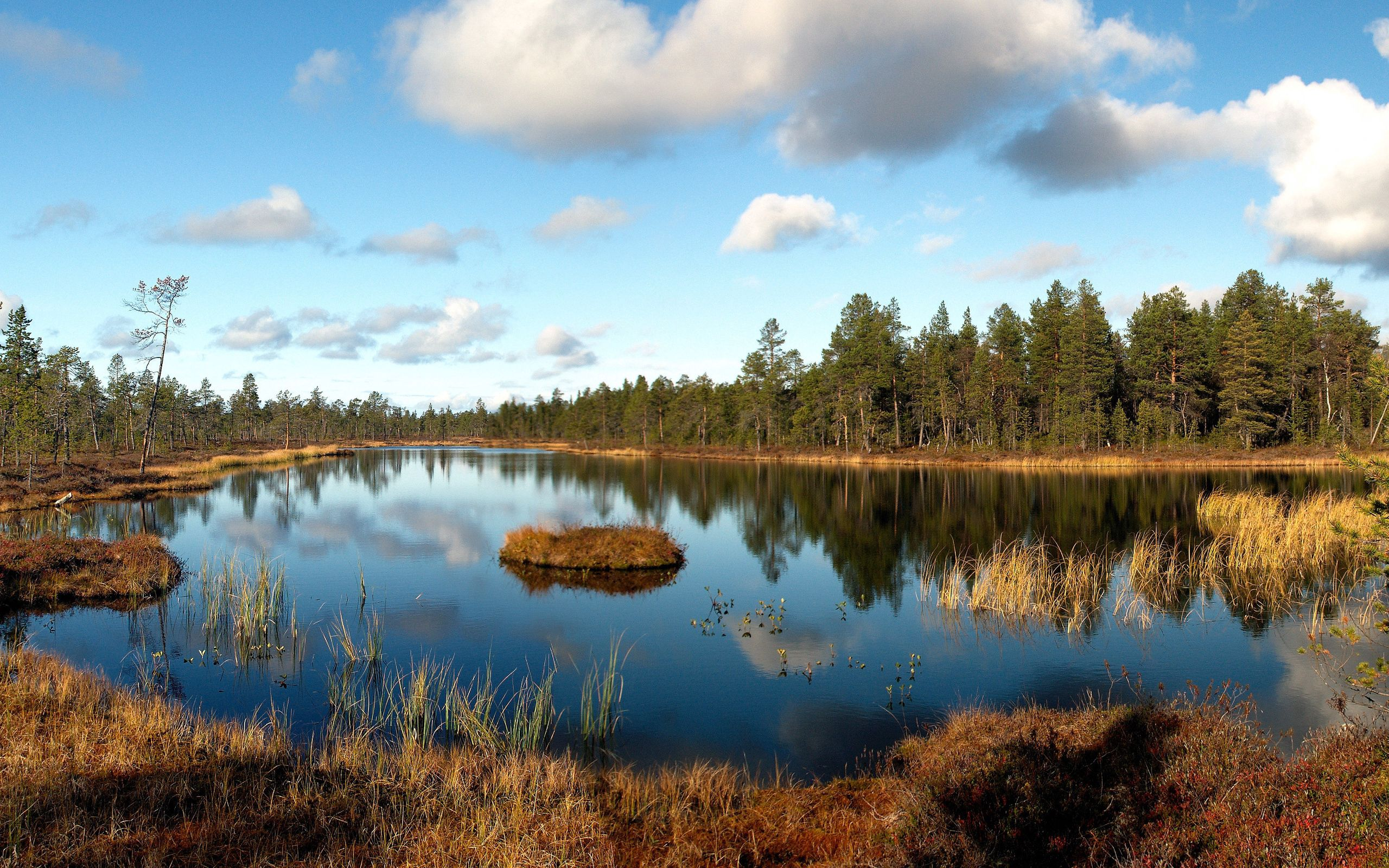 156310 Screensavers and Wallpapers Landscape for phone. Download Nature, Forest, Grass, Withered, It's A Sly, Lake, Autumn, Island, Islet, Shadows, Clouds, Reflection, October, Landscape pictures for free
