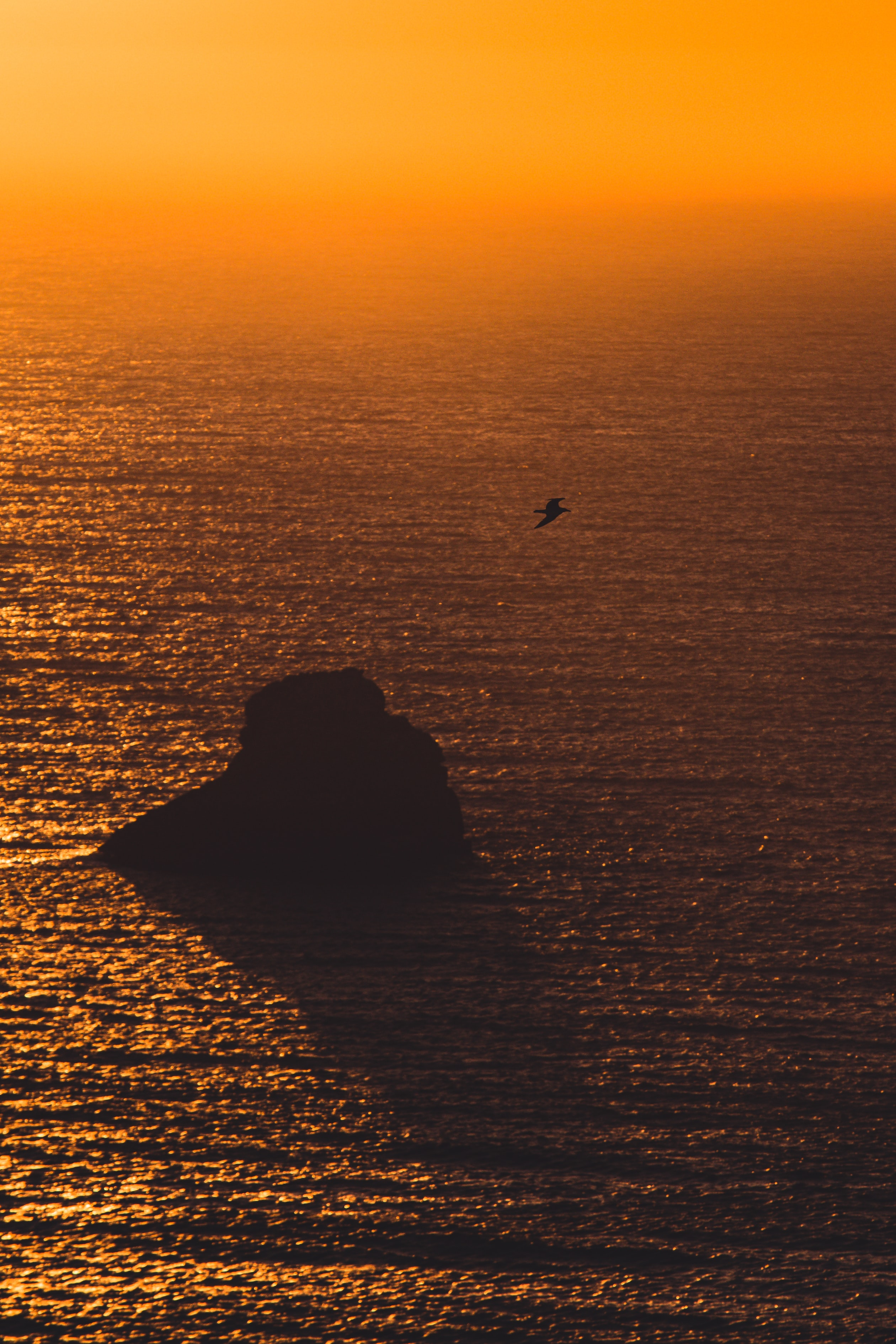 128441 download wallpaper Nature, Sea, Sunset, Rock, Gull, Seagull, Glare screensavers and pictures for free