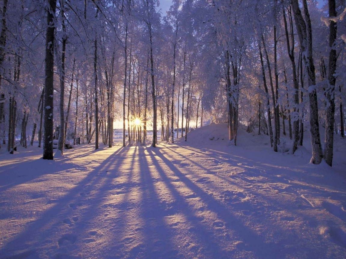 44201 download wallpaper Landscape, Winter screensavers and pictures for free