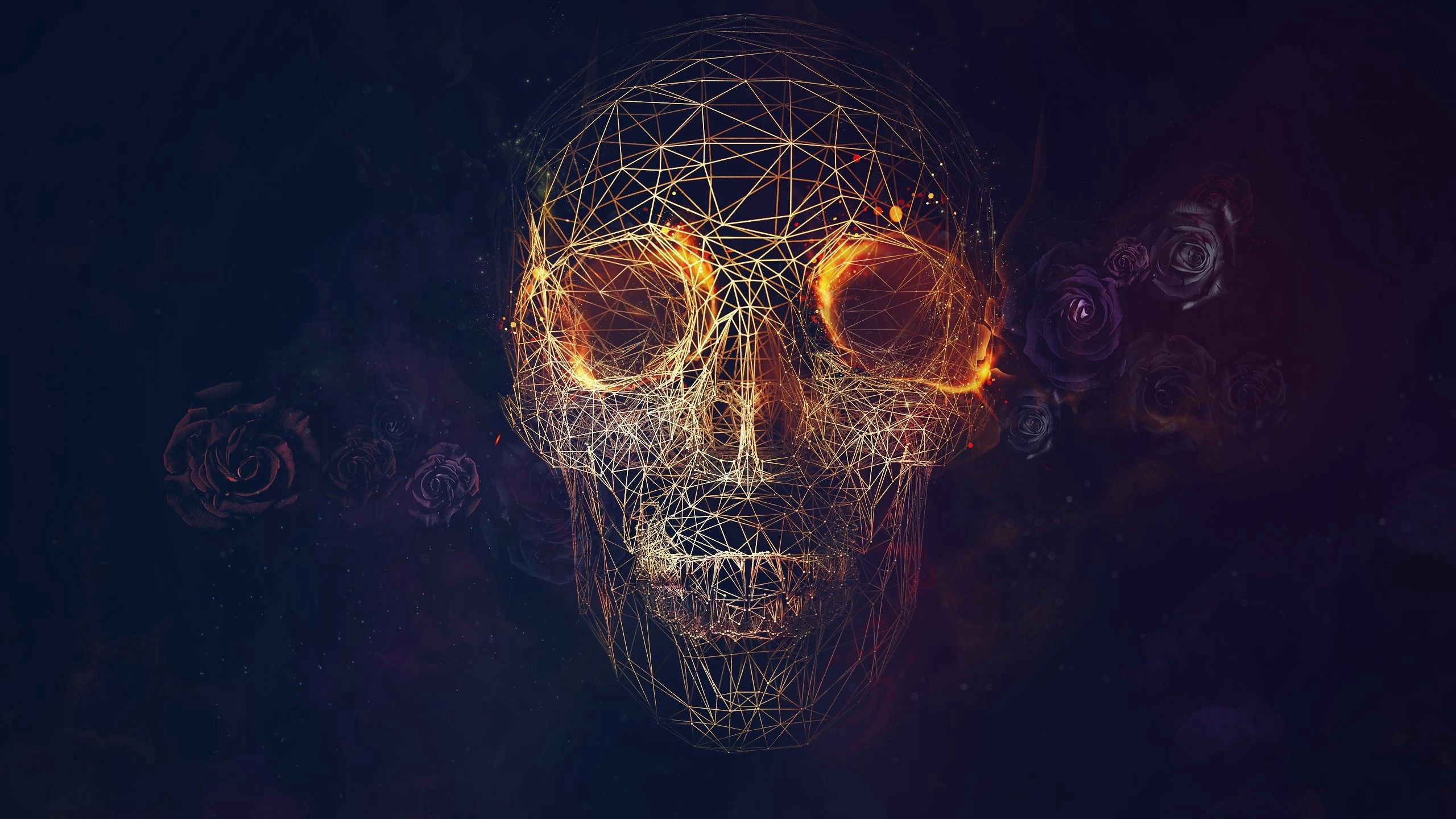 82726 download wallpaper Abstract, Skull, Lines, Geometry, Roses screensavers and pictures for free