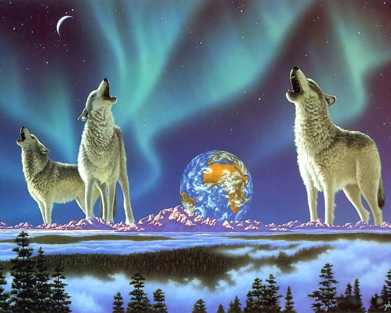 13047 download wallpaper Animals, Wolfs screensavers and pictures for free