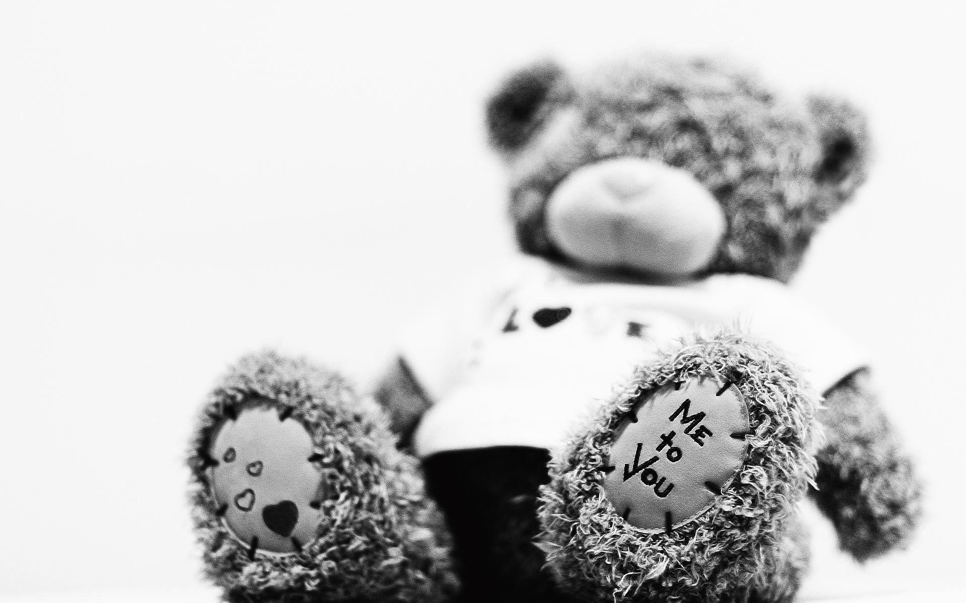 62891 скачать обои Разное, Мишка Тедди, Плюшевый, Медведь, Игрушка, Мягкий - заставки и картинки бесплатно