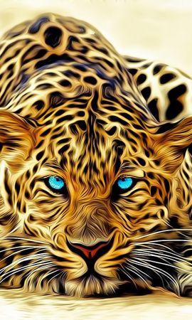 35787 Protetores de tela e papéis de parede Imagens em seu telefone. Baixe Animais, Leopards, Imagens fotos gratuitamente