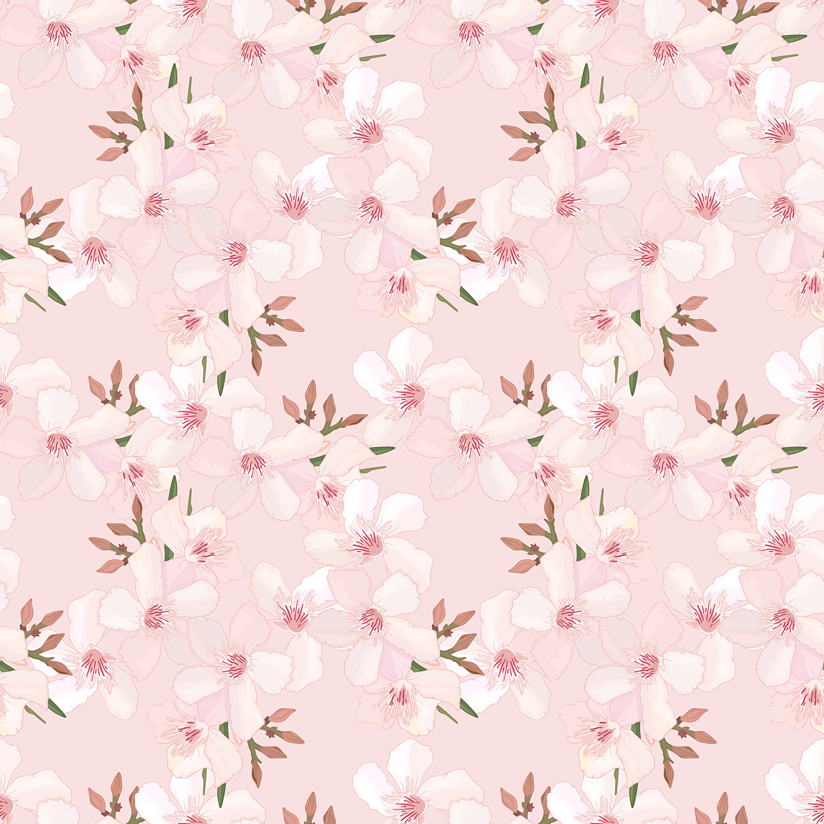 124066 Screensavers and Wallpapers Sakura for phone. Download Flowers, Cherry, Pink, Sakura, Pattern, Texture, Textures, Tender, Spring pictures for free