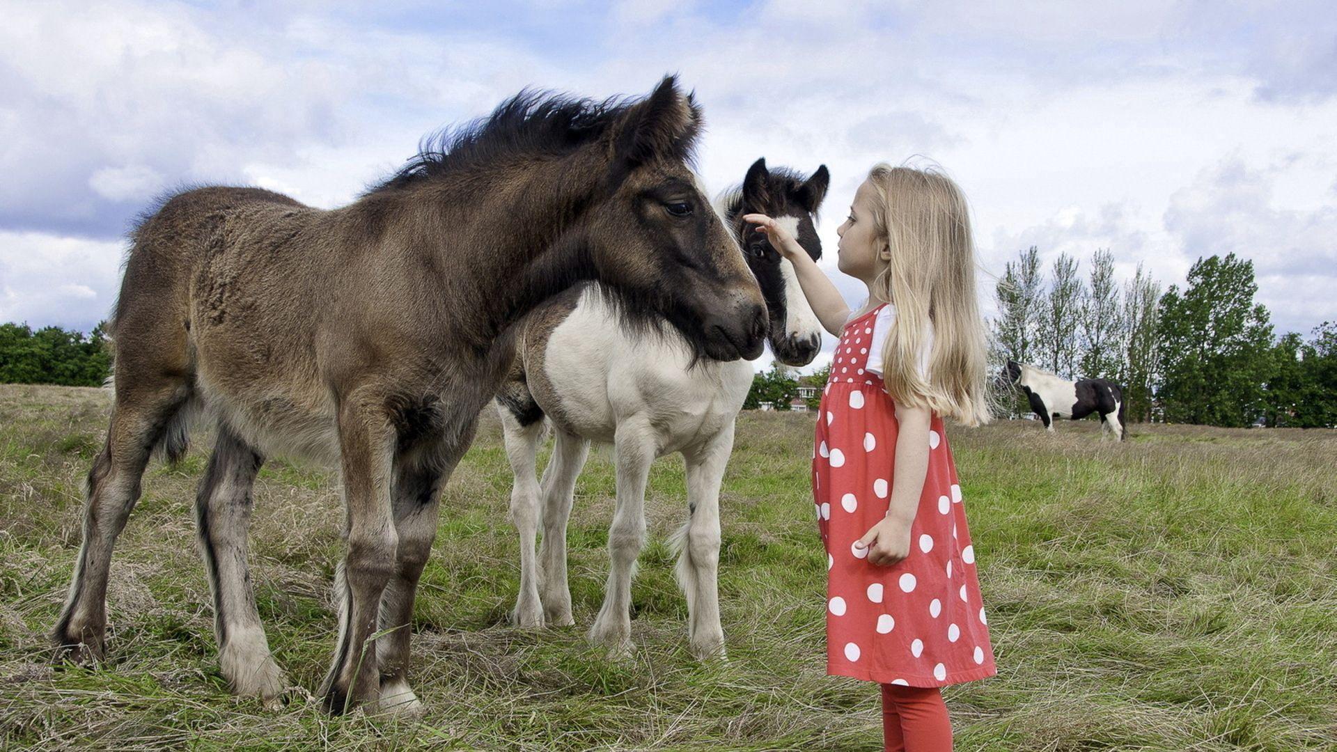 124059 скачать обои Разное, Девочка, Ребенок, Пони, Прогулка, Трава - заставки и картинки бесплатно
