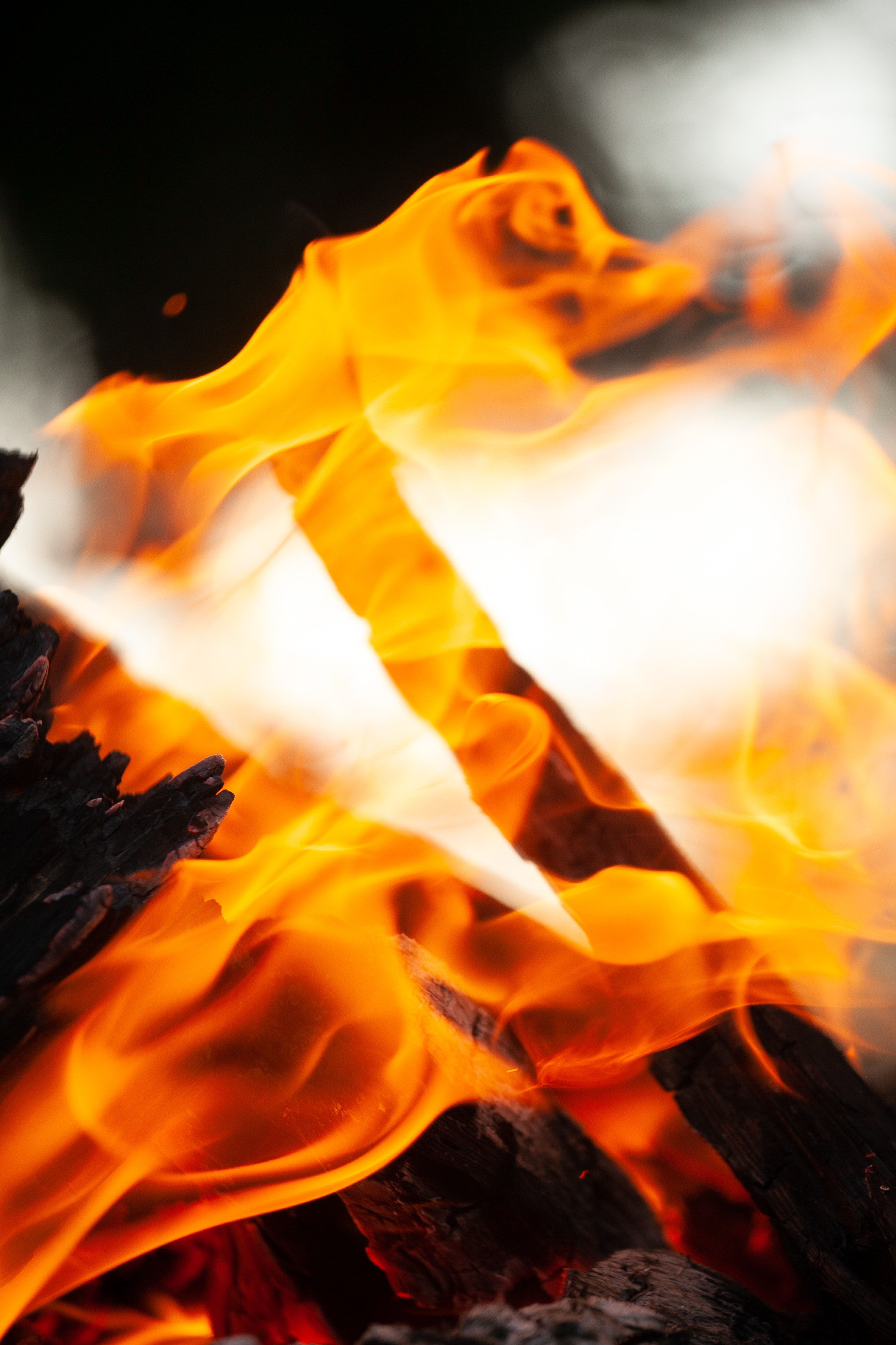80245 Screensavers and Wallpapers Firewood for phone. Download Fire, Bonfire, Coals, Macro, Flame, Firewood, Ash pictures for free