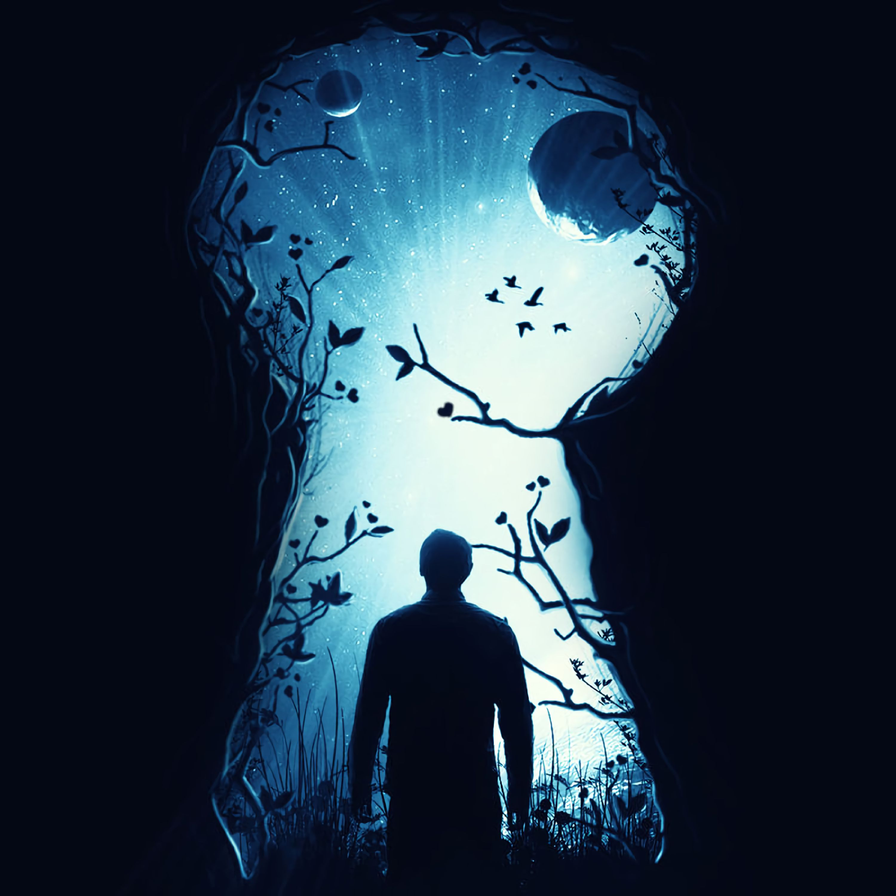 154530 download wallpaper Fantasy, Art, Dark, Silhouette, Keyhole screensavers and pictures for free