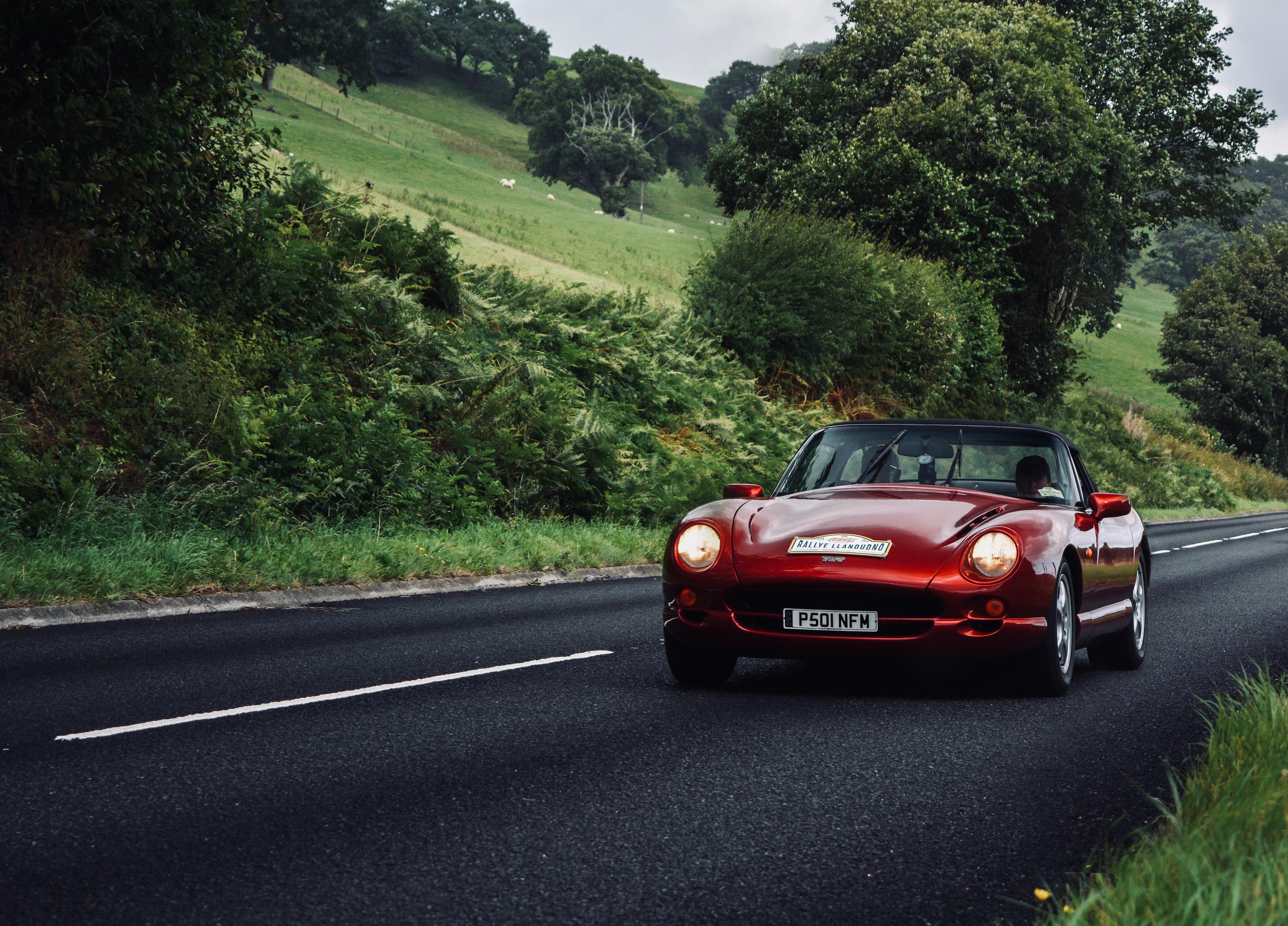 80588 скачать обои Зелень, Тачки (Cars), Дорога, Красный, Машина, Кабриолет - заставки и картинки бесплатно