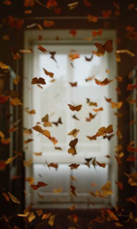 100226 descargar fondo de pantalla Miscelánea, Misceláneo, Mariposas, Local, Cuarto, Decoración, Registro, Tipografía, Borrosidad, Suave: protectores de pantalla e imágenes gratis