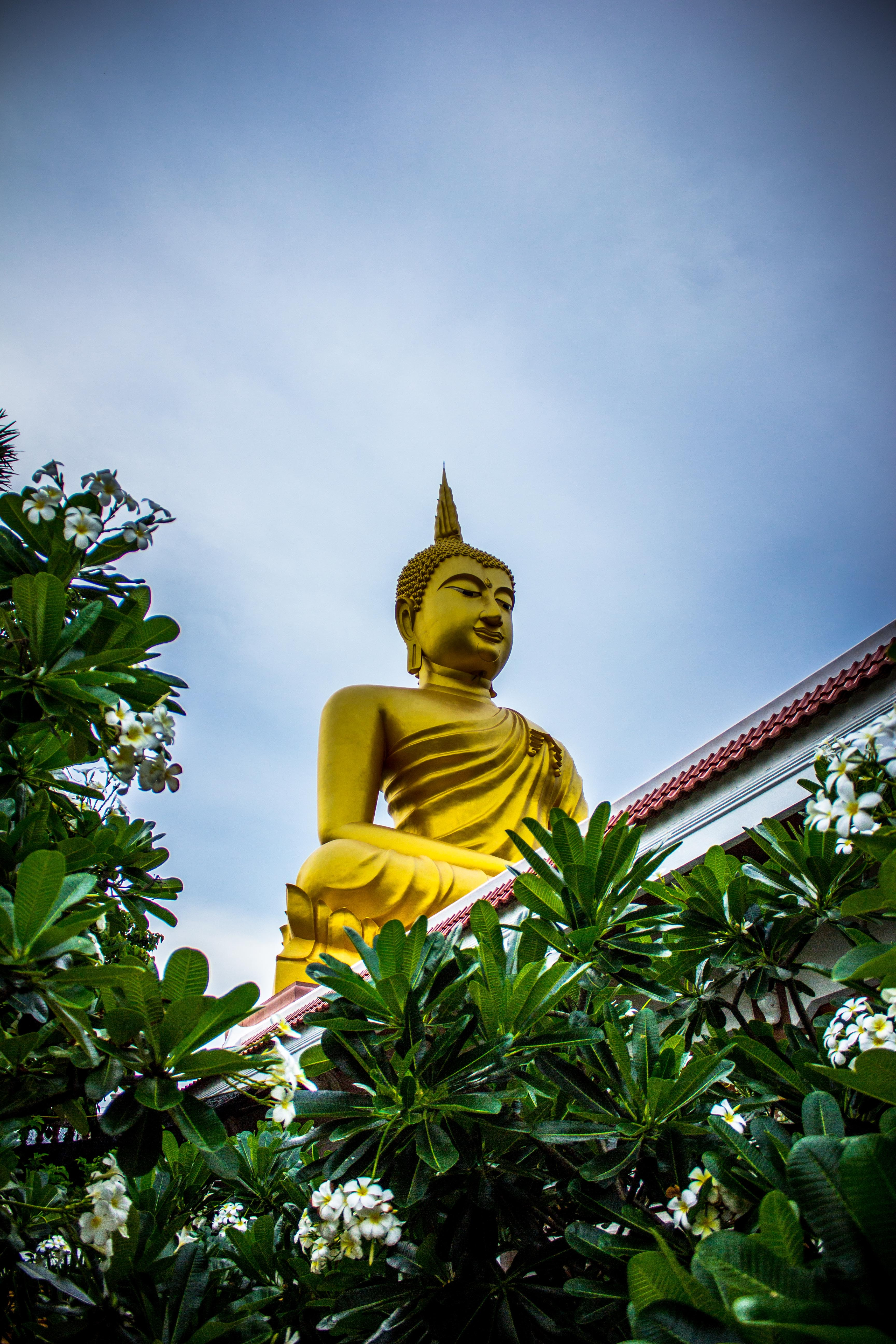 139744 скачать обои Разное, Будда, Буддизм, Скульптура, Статуя, Растения - заставки и картинки бесплатно