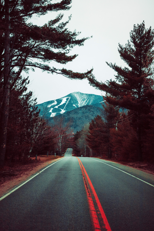 79067 скачать обои Дорога, Деревья, Природа, Горы, Пейзаж - заставки и картинки бесплатно