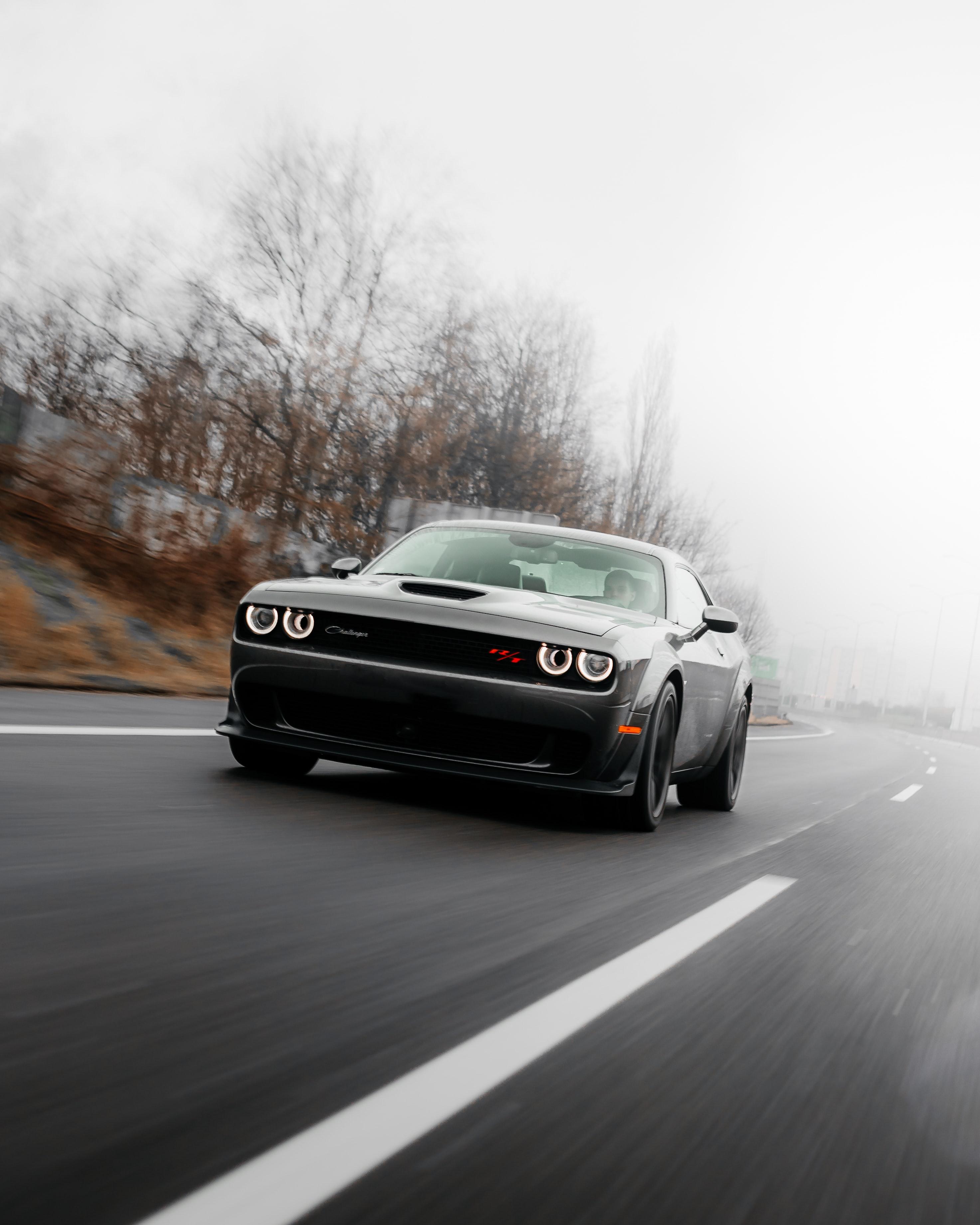118217 скачать обои Dodge Challenger, Тачки (Cars), Дорога, Автомобиль, Скорость, Dodge - заставки и картинки бесплатно