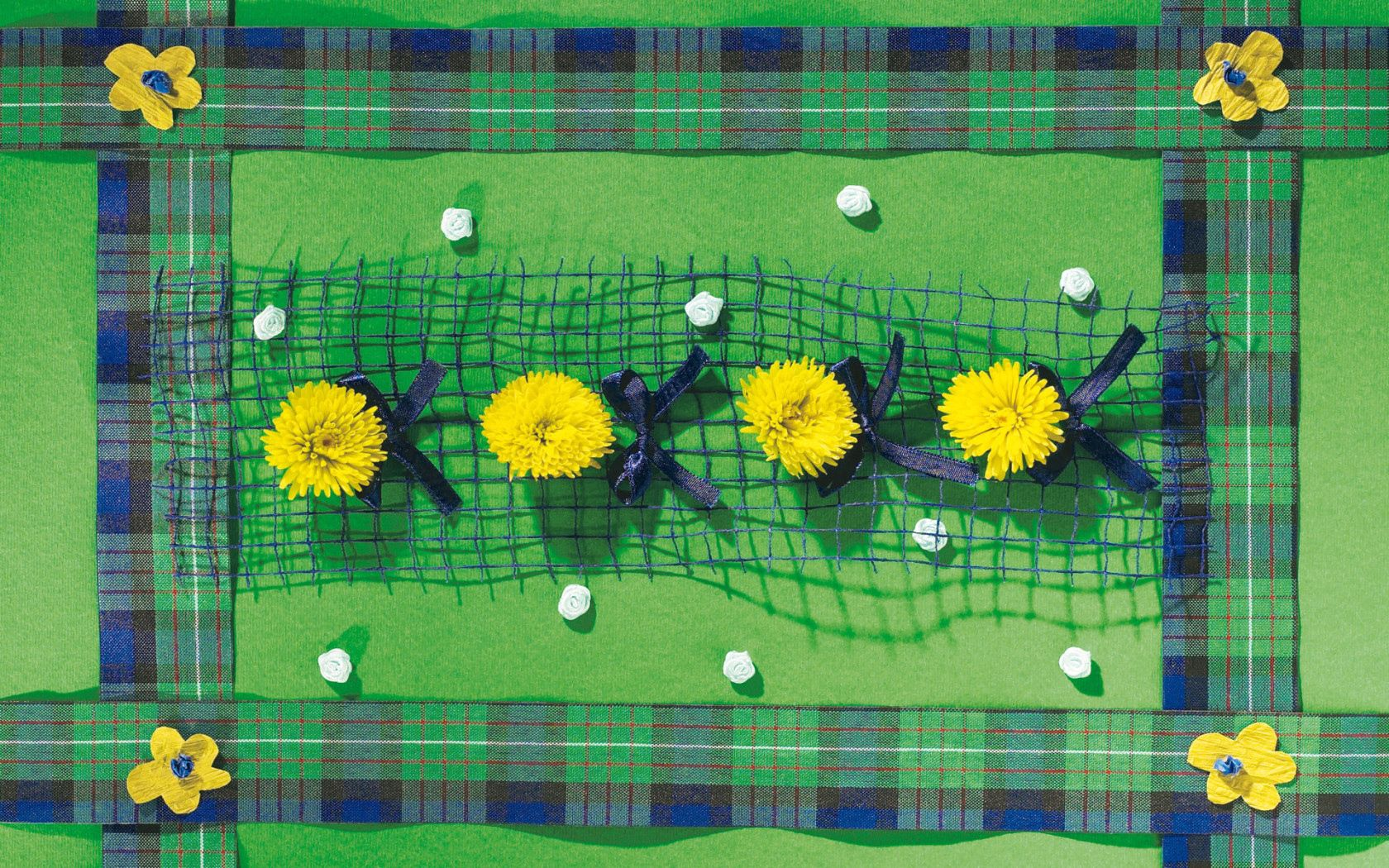 138165 Screensavers and Wallpapers Dandelions for phone. Download Flowers, Dandelions, Composition, Bows pictures for free