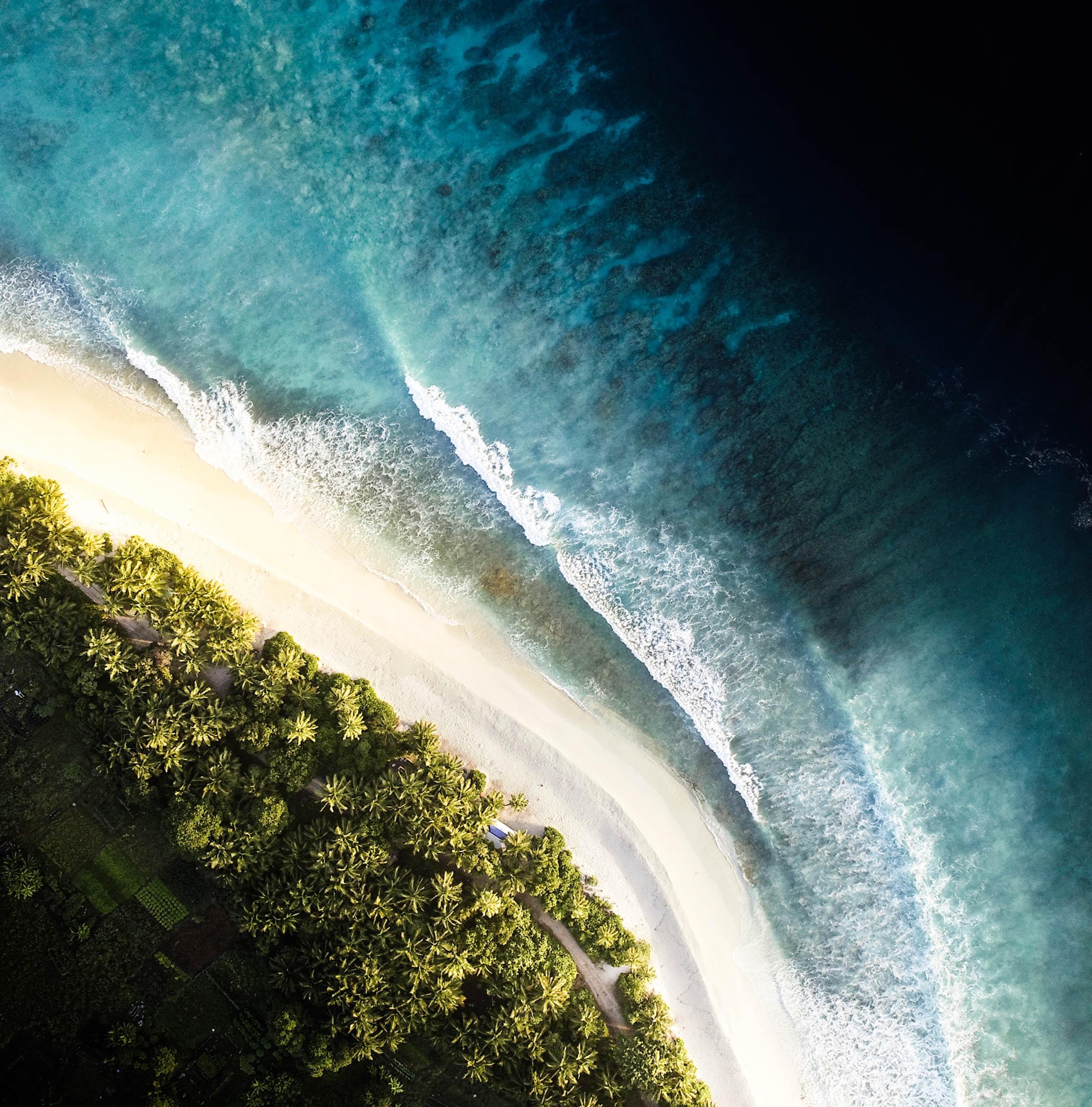 58637 Заставки и Обои Волны на телефон. Скачать Природа, Океан, Вид Сверху, Прибой, Берег, Волны, Пальмы картинки бесплатно