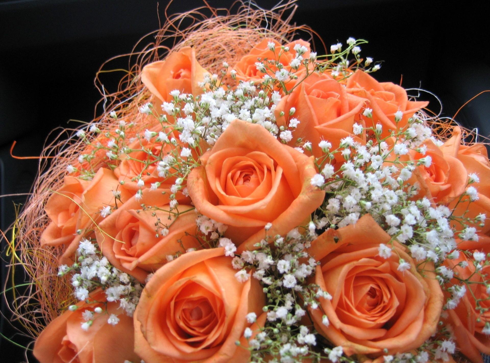 67393 скачать обои Розы, Цветы, Оформление, Букет, Гипсофил, Нежность - заставки и картинки бесплатно