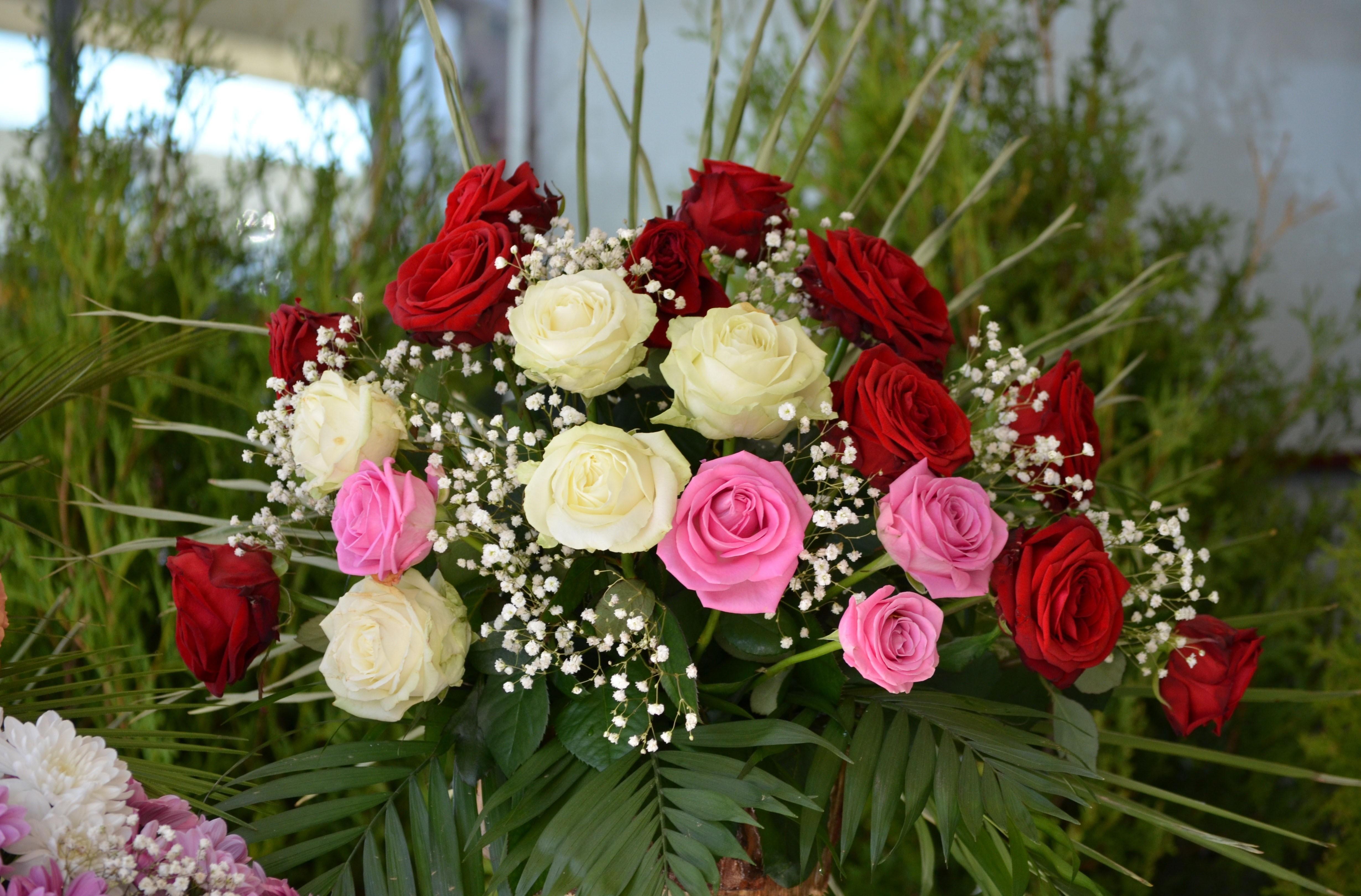 59713 скачать обои Букет, Розы, Цветы, Оформление, Красота, Гипсофил - заставки и картинки бесплатно