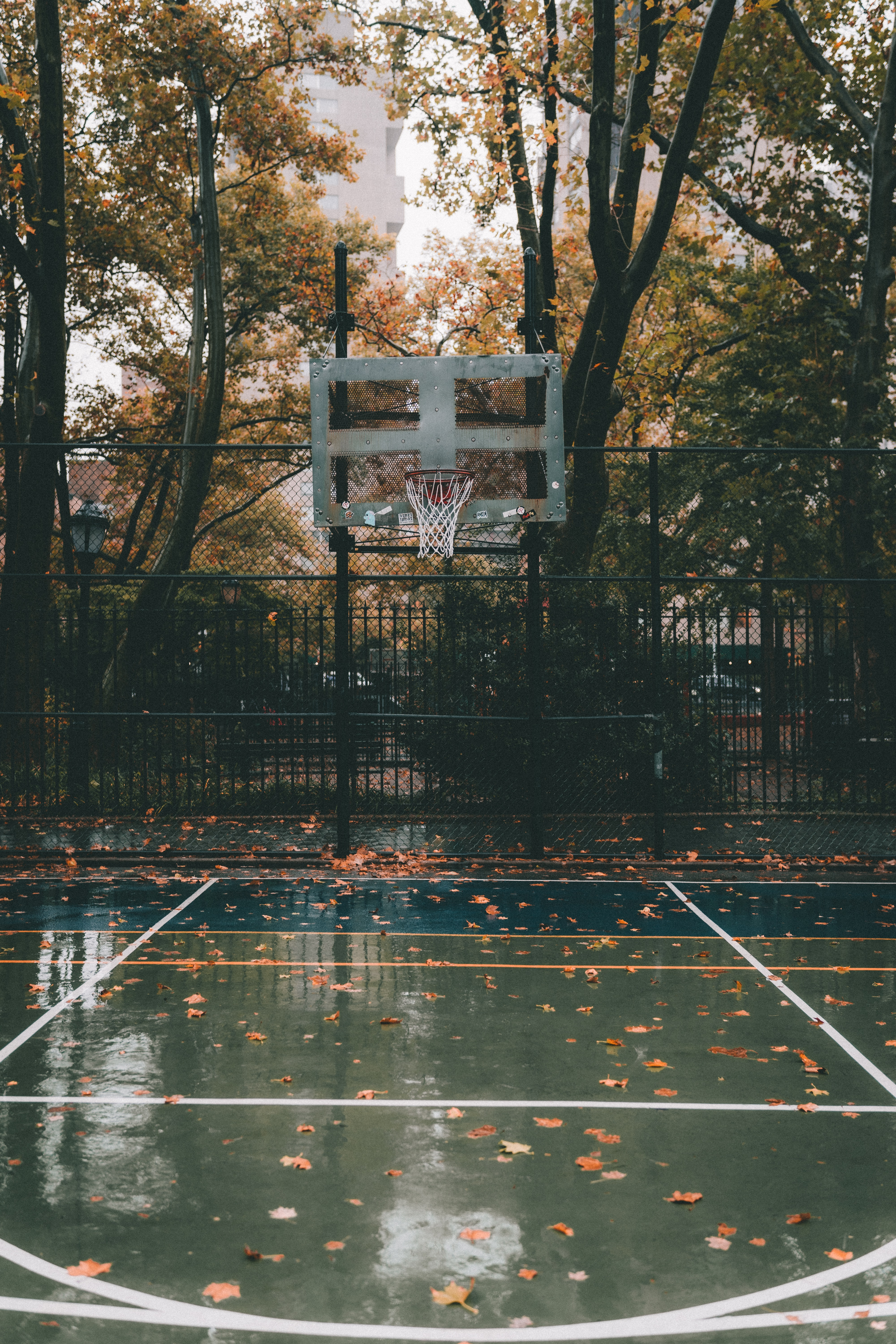 90507 Screensavers and Wallpapers Basketball for phone. Download Sports, Basketball Playground, Basketball Court, Basketball, Playground, Platform, Basket, Autumn pictures for free