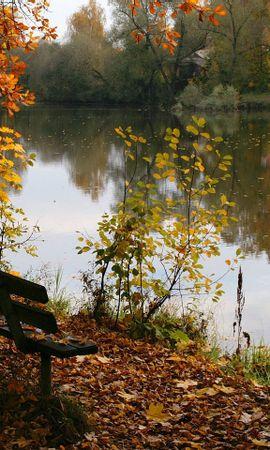 26680 скачать обои Пейзаж, Река, Деревья, Осень, Листья - заставки и картинки бесплатно