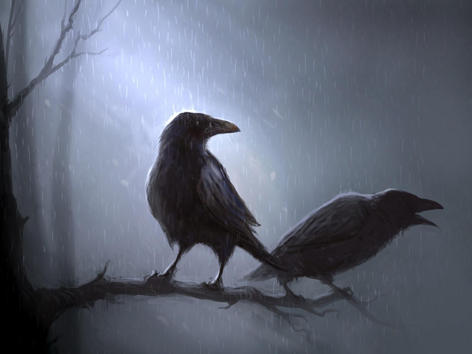Téléchargez des papiers peints mobile Dessins, Corbeaux, Oiseaux, Animaux, Pluie gratuitement.