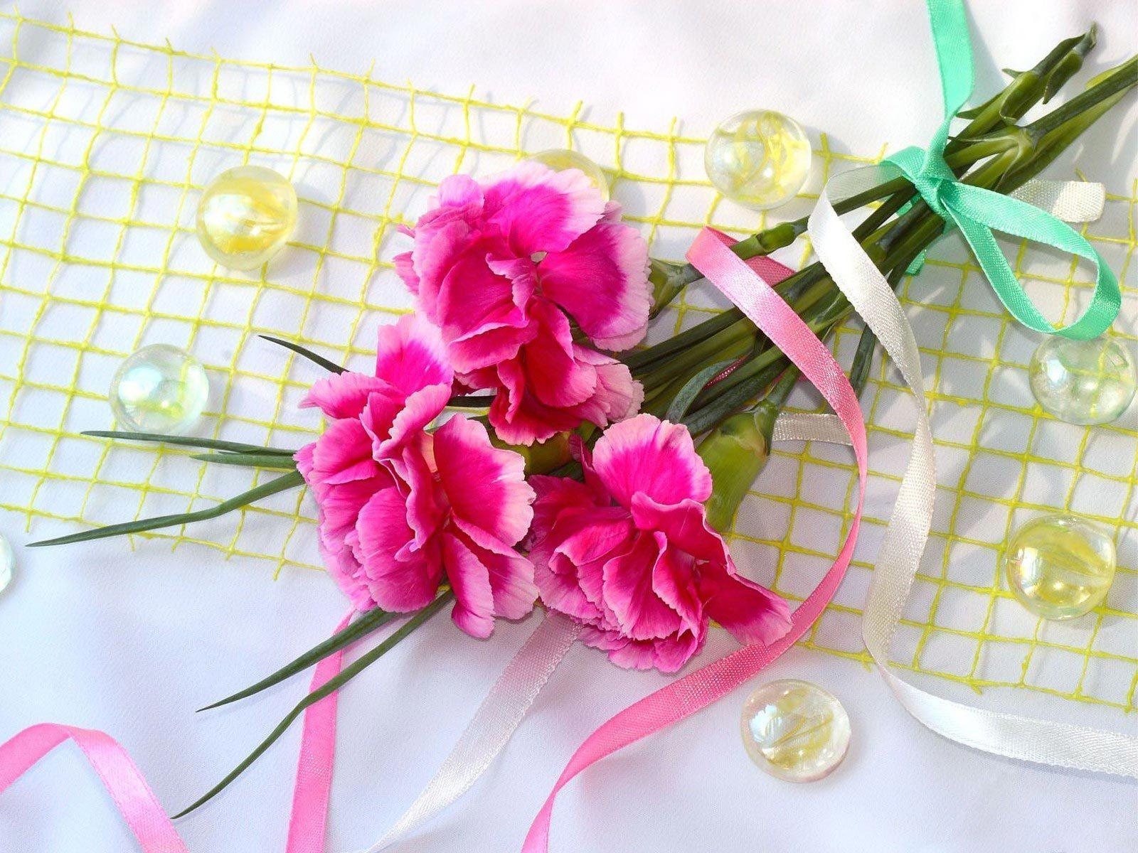 Handy-Wallpaper Pflanzen, Blumen, Bouquets, Nelken kostenlos herunterladen.