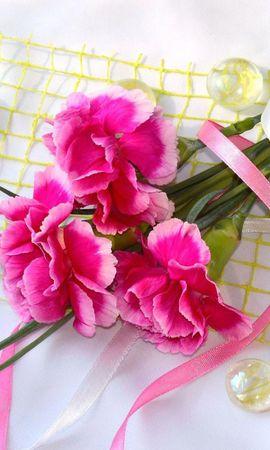 21747 скачать обои Растения, Цветы, Букеты, Гвоздики - заставки и картинки бесплатно