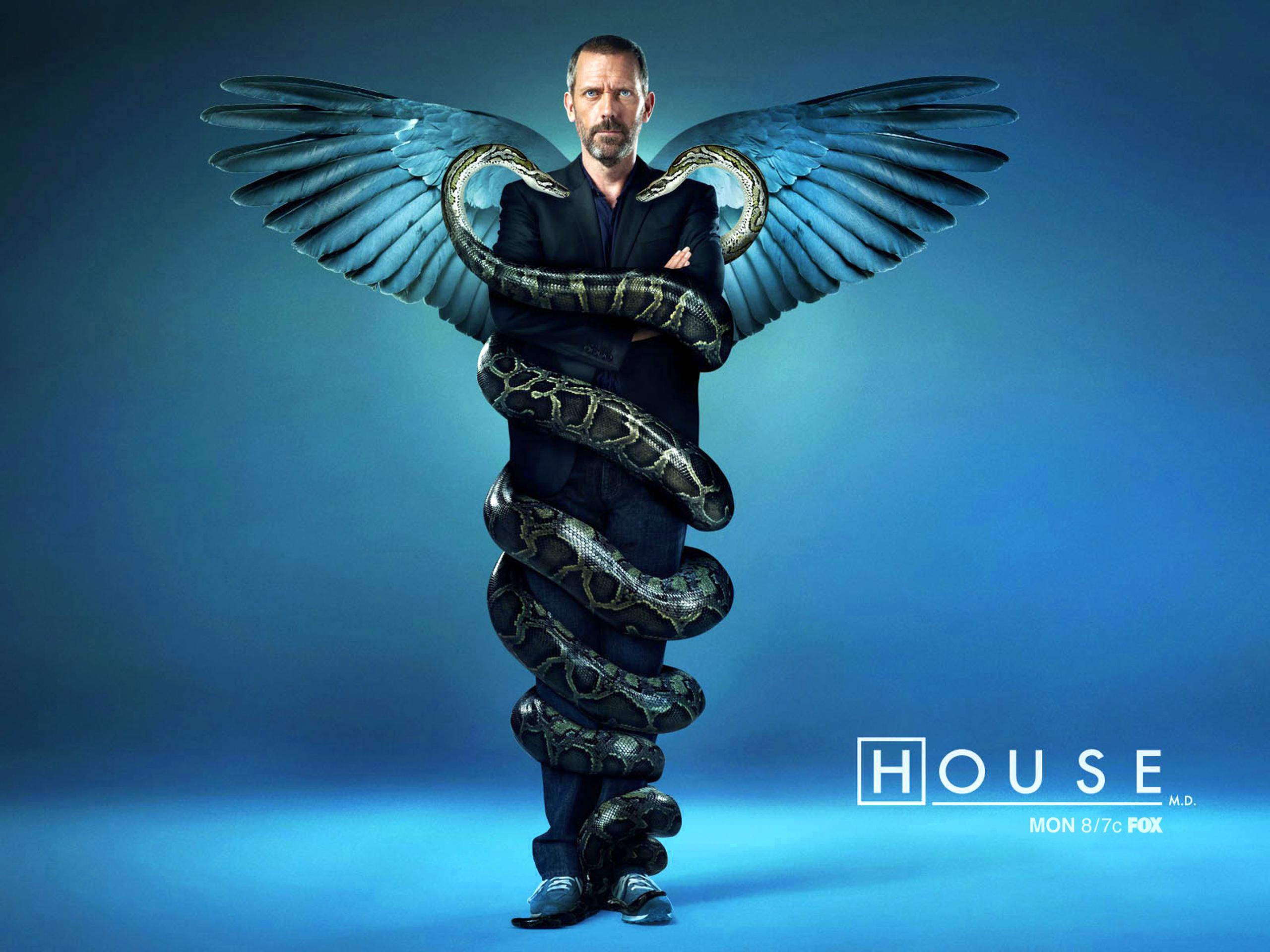17546 скачать обои Кино, Люди, Актеры, Доктор Хаус (House M.d.), Хью Лори (Hugh Laurie) - заставки и картинки бесплатно
