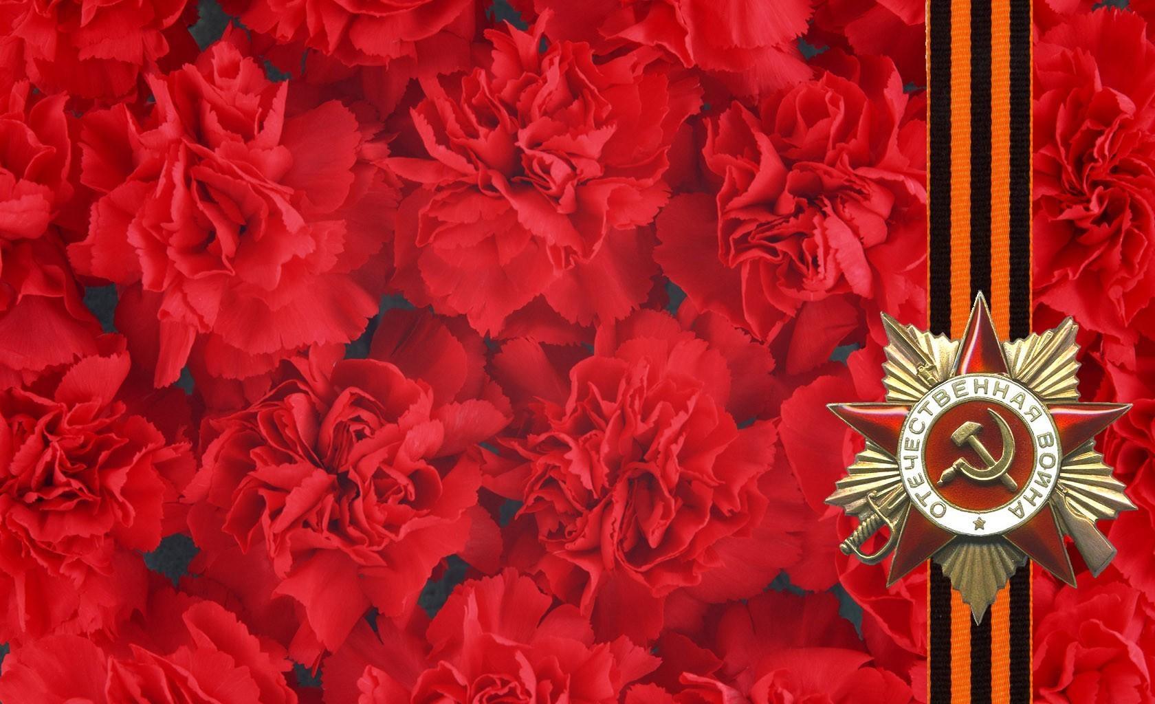 147111 скачать обои Гвоздики, Праздники, Праздник, Звезда, 9 Мая, Георгиевская Лента, Память, Победа - заставки и картинки бесплатно