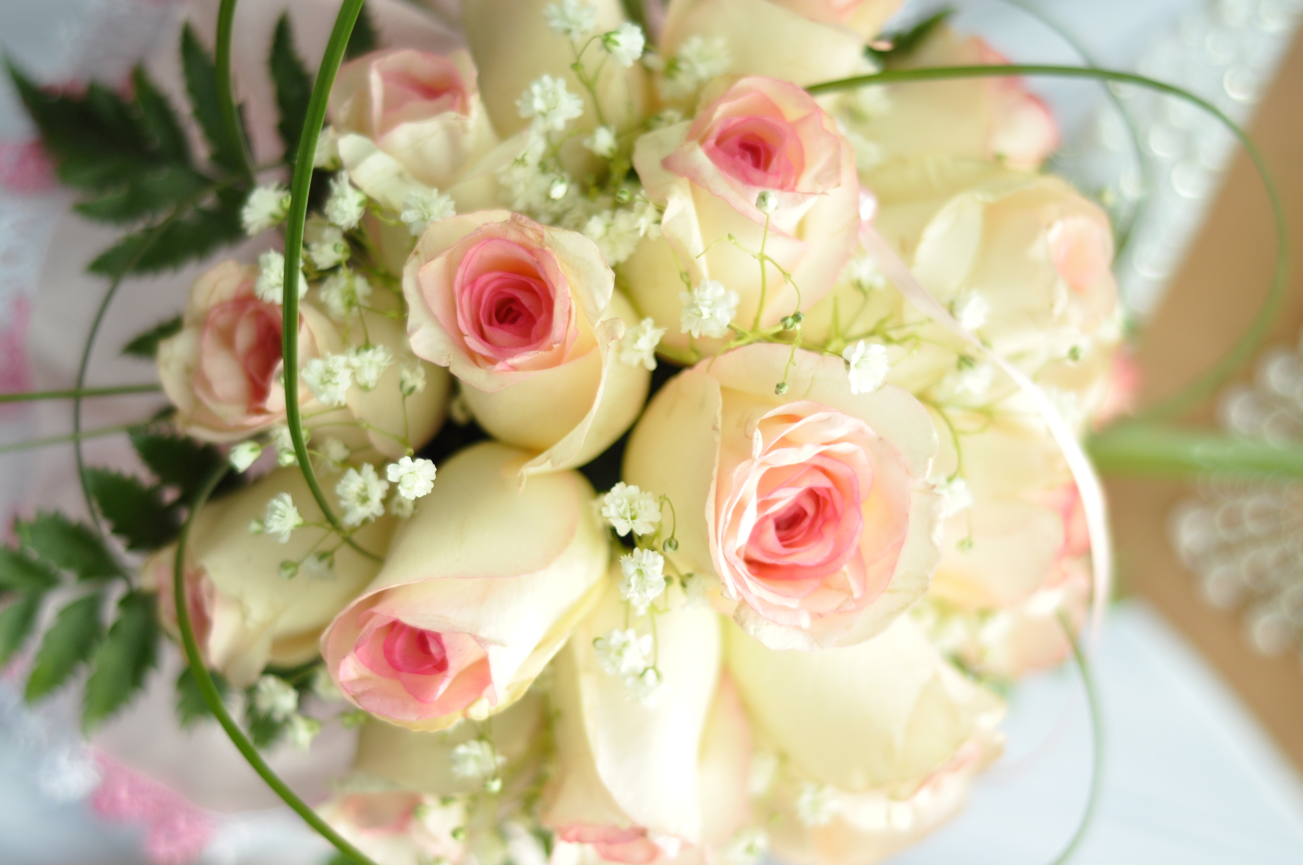 76861 download wallpaper Flowers, Grass, Roses, Bouquet, Tenderness screensavers and pictures for free