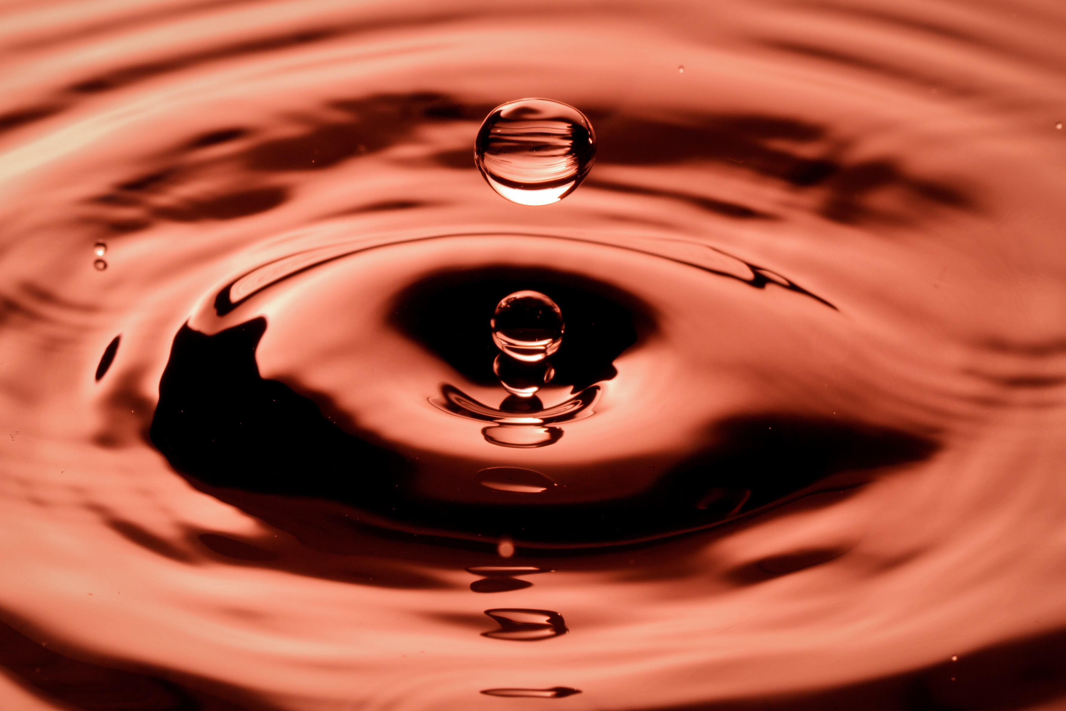 117275 download wallpaper Macro, Drops, Liquid screensavers and pictures for free