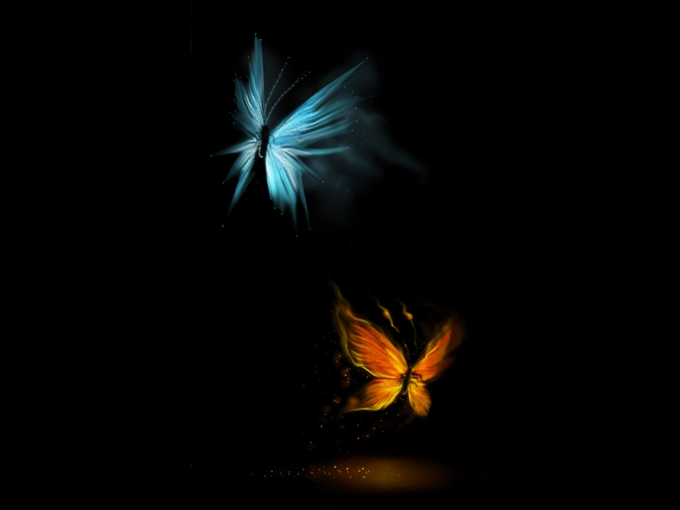 31521 download wallpaper Butterflies, Insects, Pictures screensavers and pictures for free
