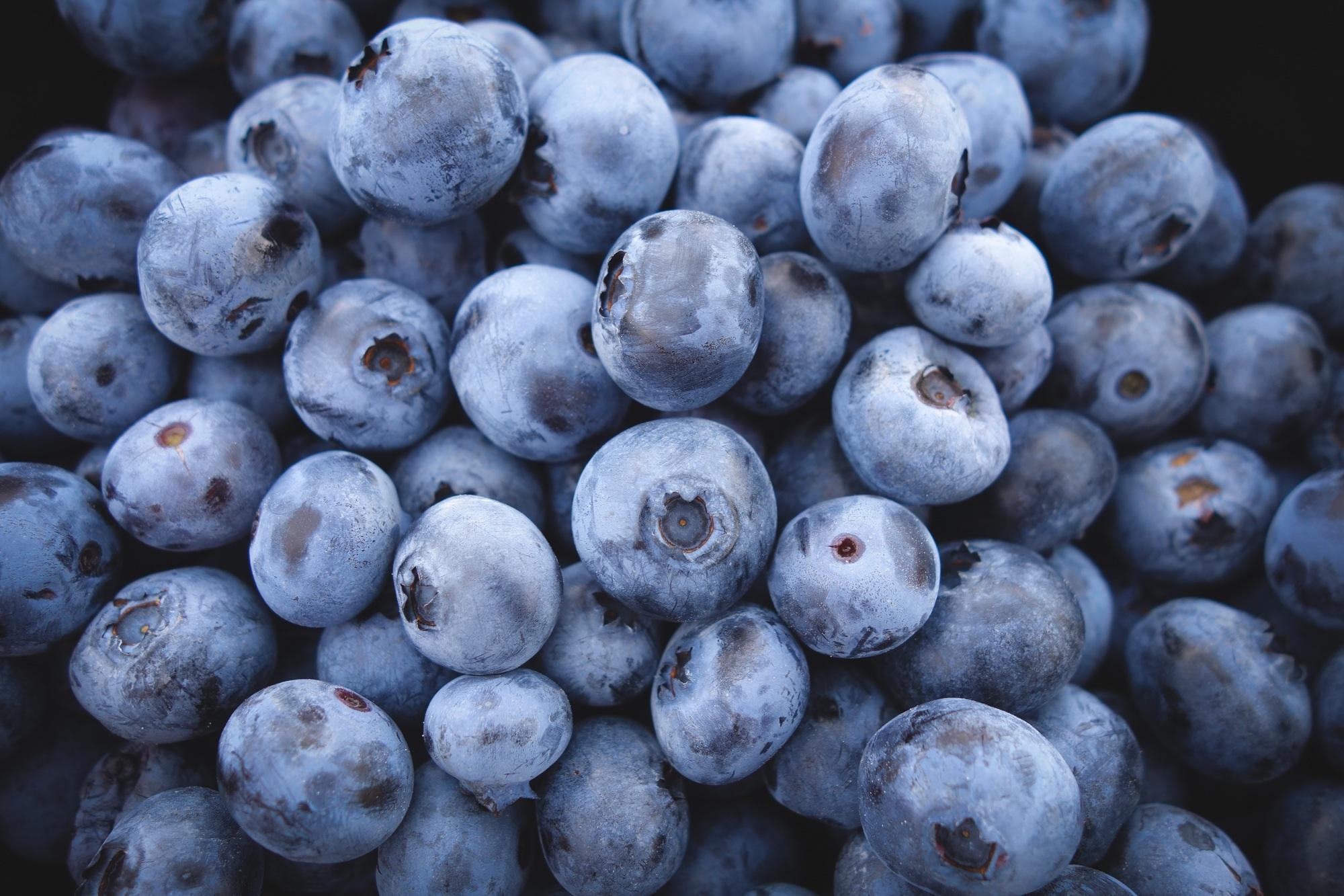 99067 Hintergrundbild herunterladen Lebensmittel, Blaubeeren, Beere, Reif - Bildschirmschoner und Bilder kostenlos