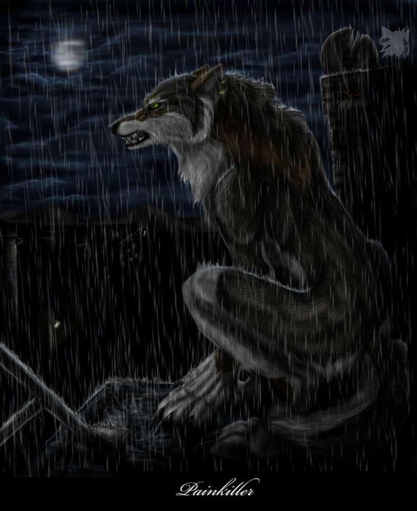 21746 скачать обои Животные, Волки, Фэнтези, Дождь - заставки и картинки бесплатно