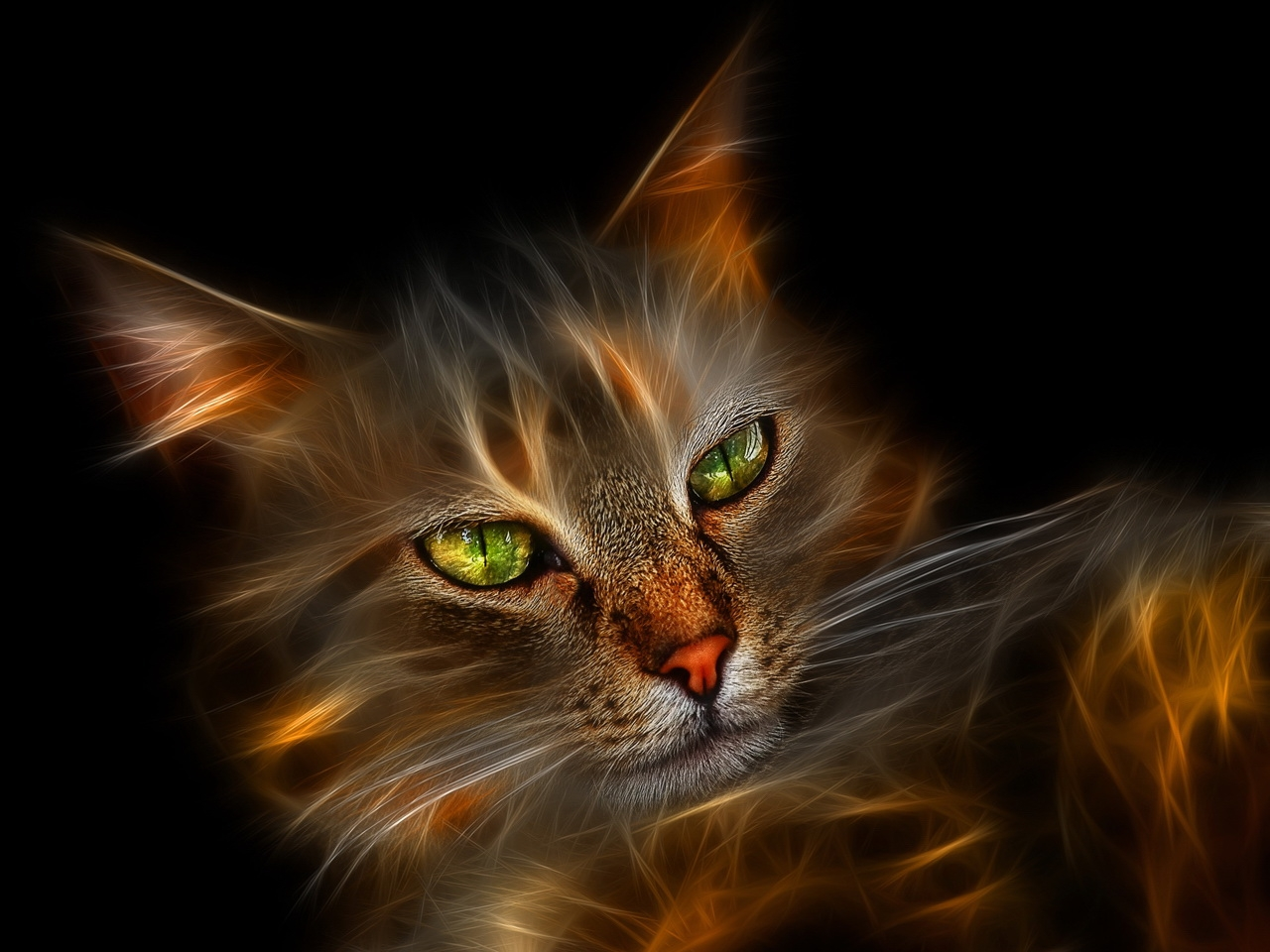 35112 скачать обои Кошки (Коты, Котики), Животные, Арт - заставки и картинки бесплатно