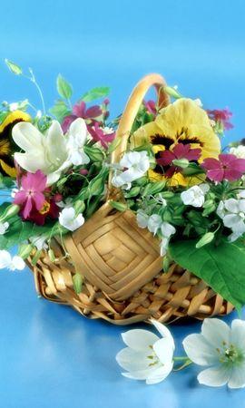 19059 скачать обои Праздники, Растения, Цветы, Букеты - заставки и картинки бесплатно