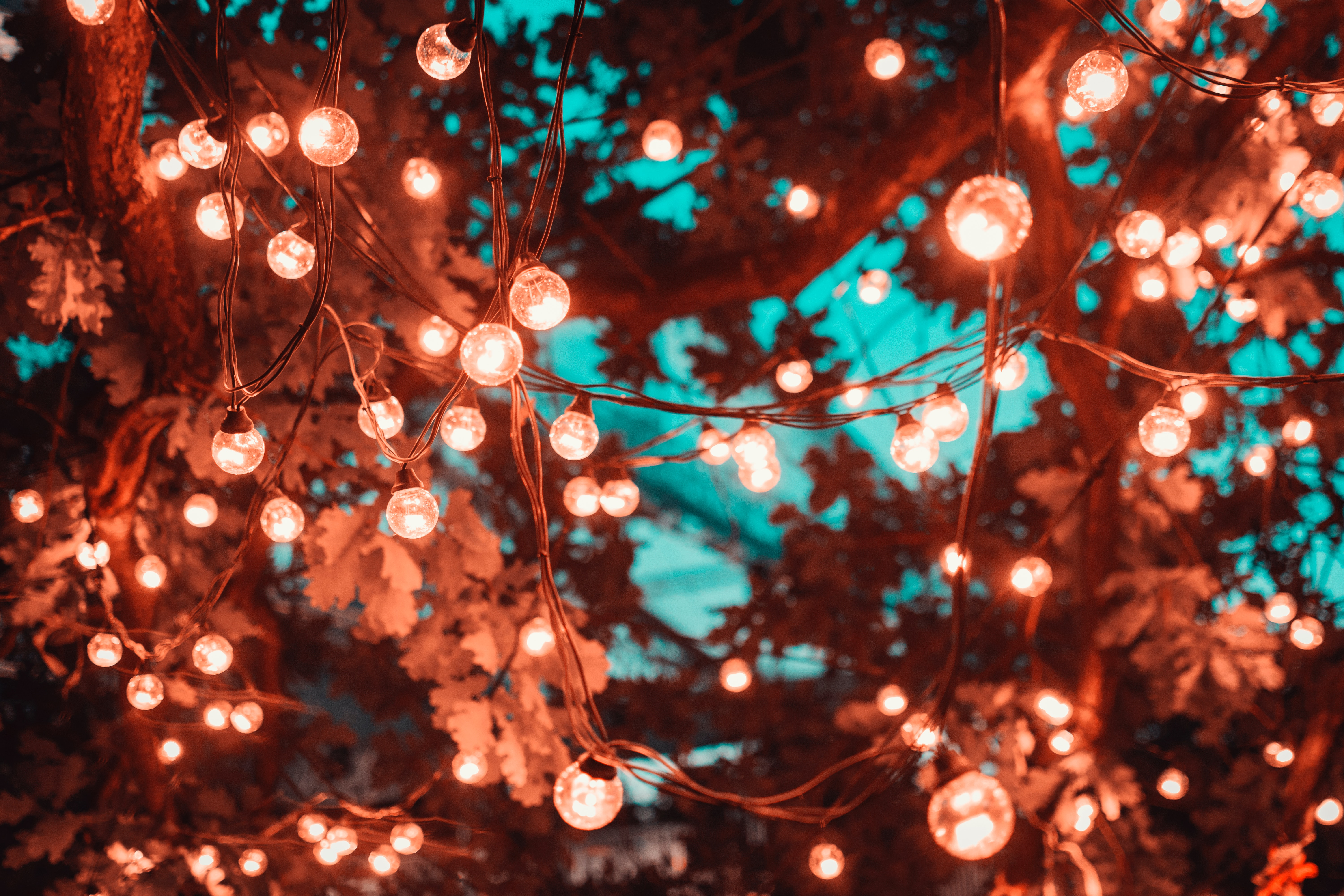 66338 download wallpaper Miscellanea, Miscellaneous, Light Bulbs, Garland, Lighting, Illumination, Blur, Smooth screensavers and pictures for free