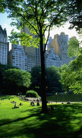 1825 скачать обои Пейзаж, Дома, Деревья, Архитектура, Парки - заставки и картинки бесплатно