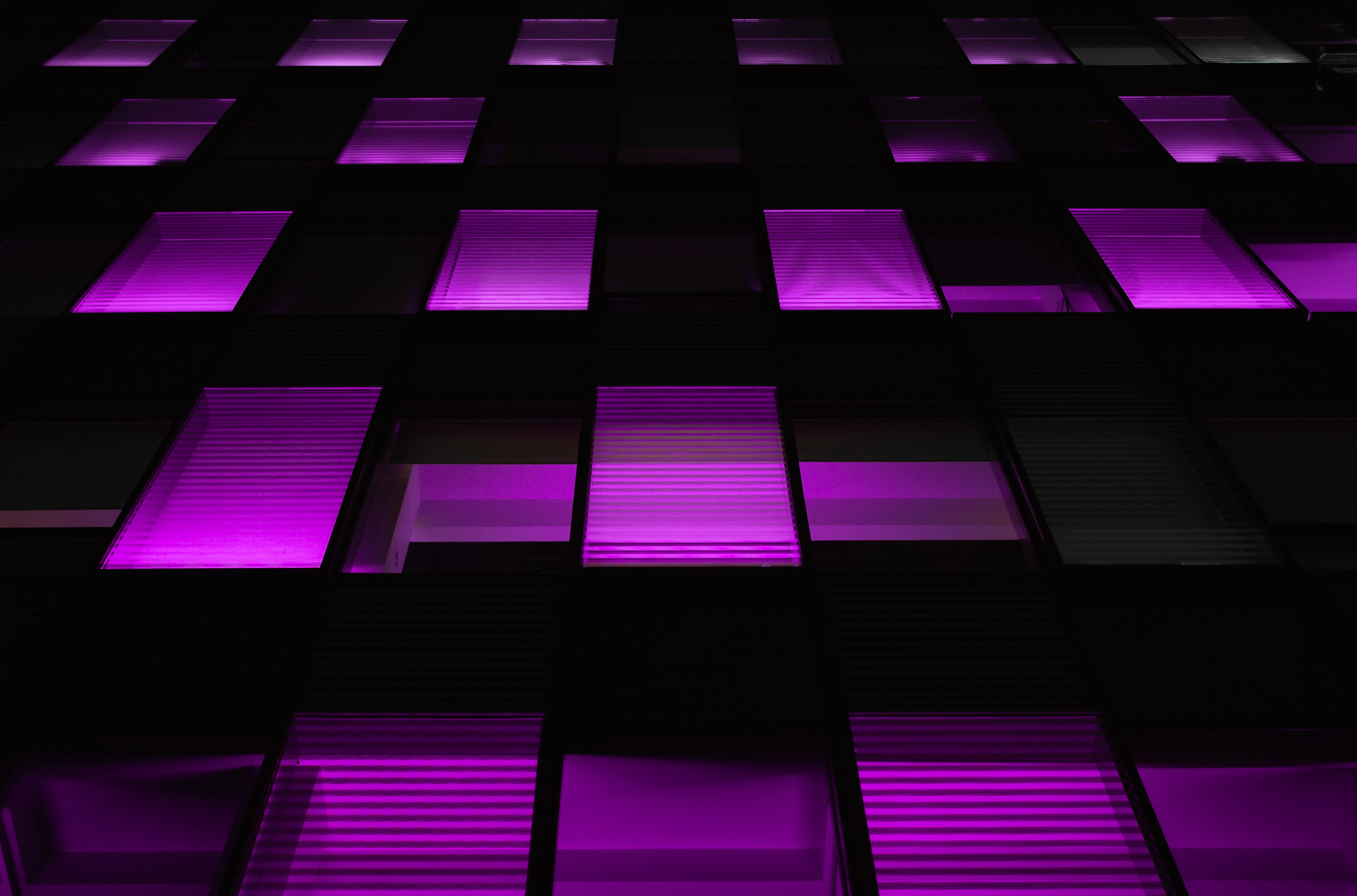 59176 Screensavers and Wallpapers Windows for phone. Download Violet, Windows, Dark, Neon, Backlight, Illumination, Purple pictures for free