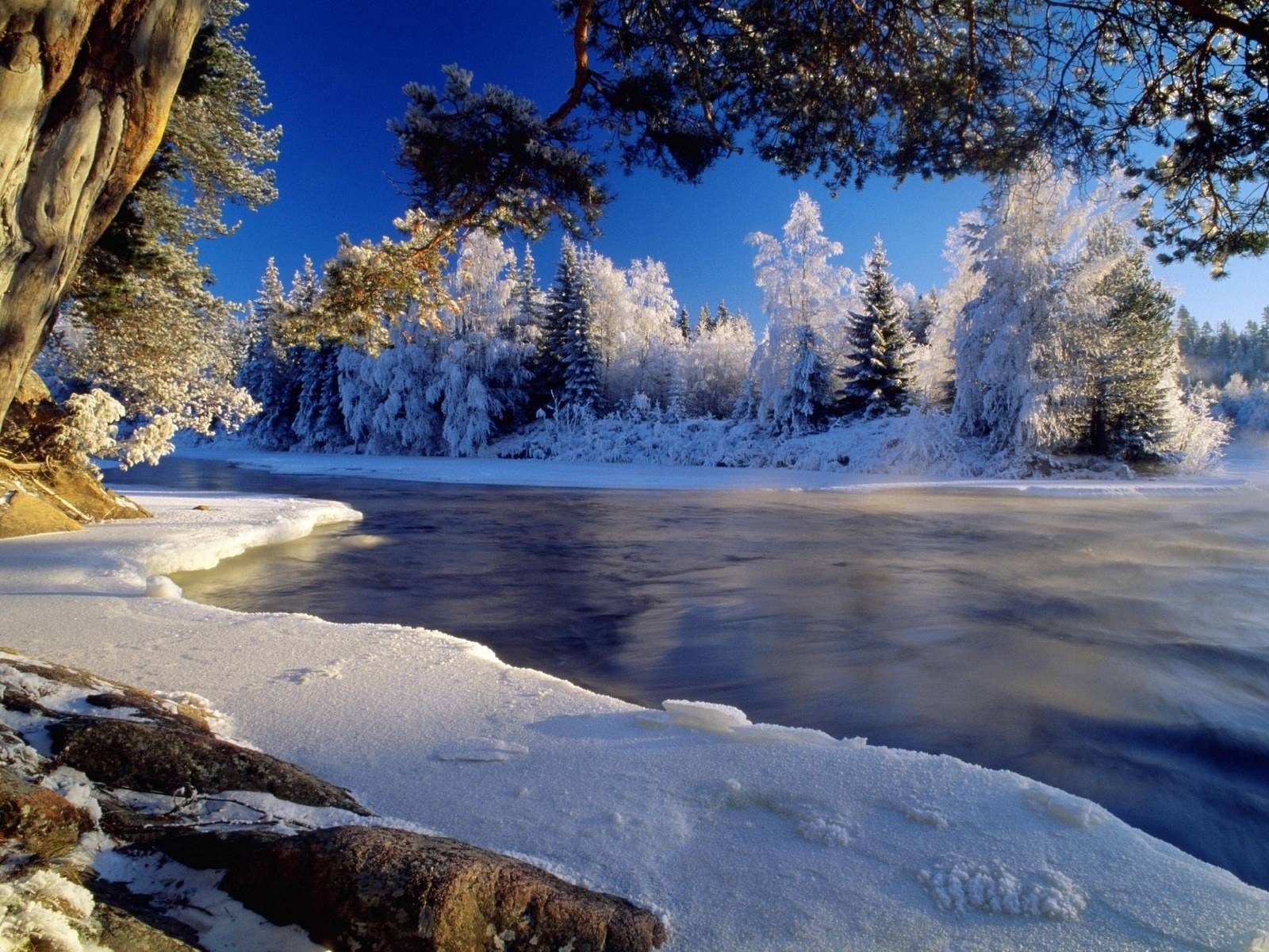1299 download wallpaper Landscape, Winter, Rivers, Trees, Snow screensavers and pictures for free