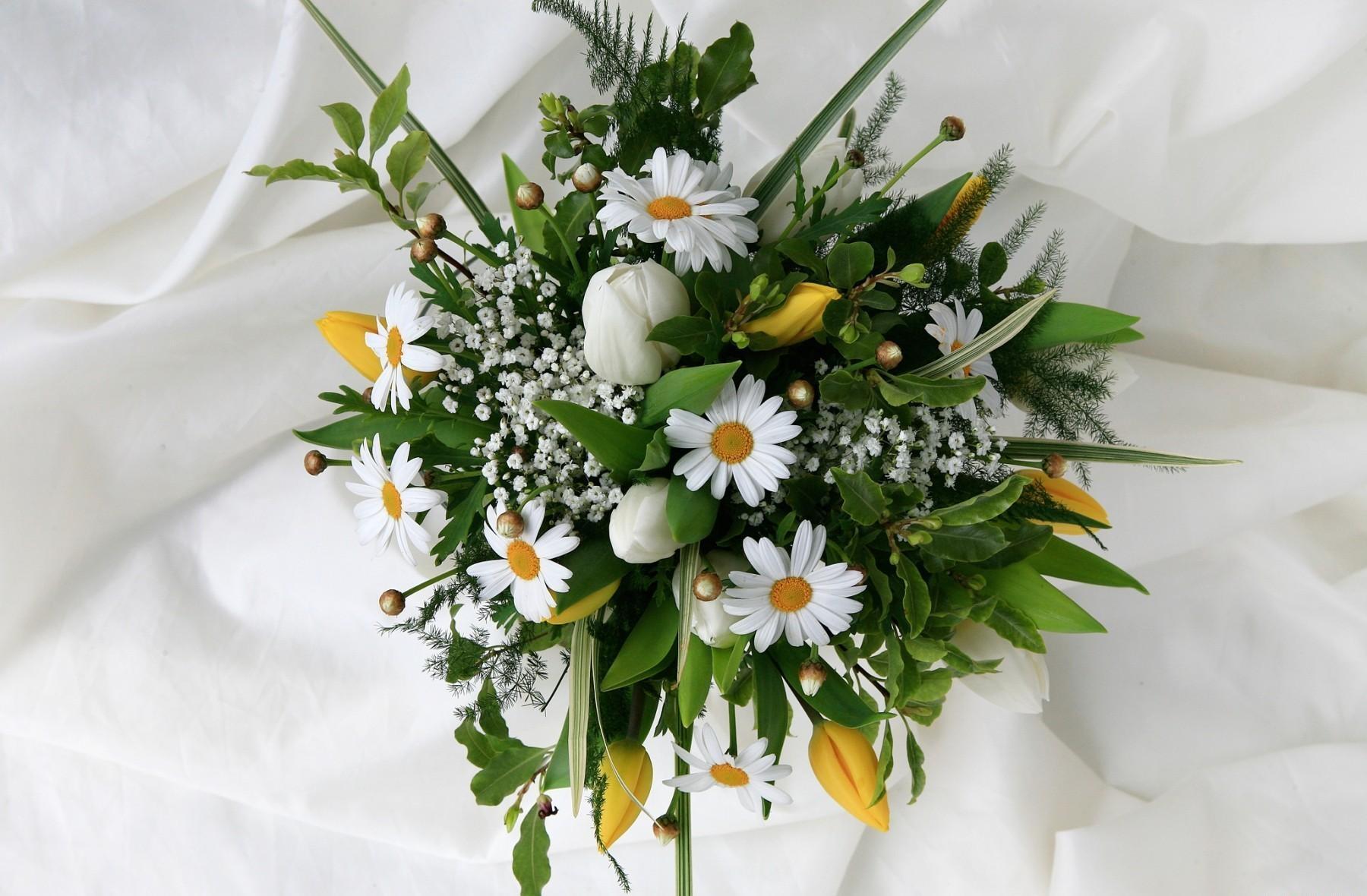 90778 скачать обои Ромашки, Тюльпаны, Цветы, Оформление, Букет, Гипсофил, Нежность - заставки и картинки бесплатно